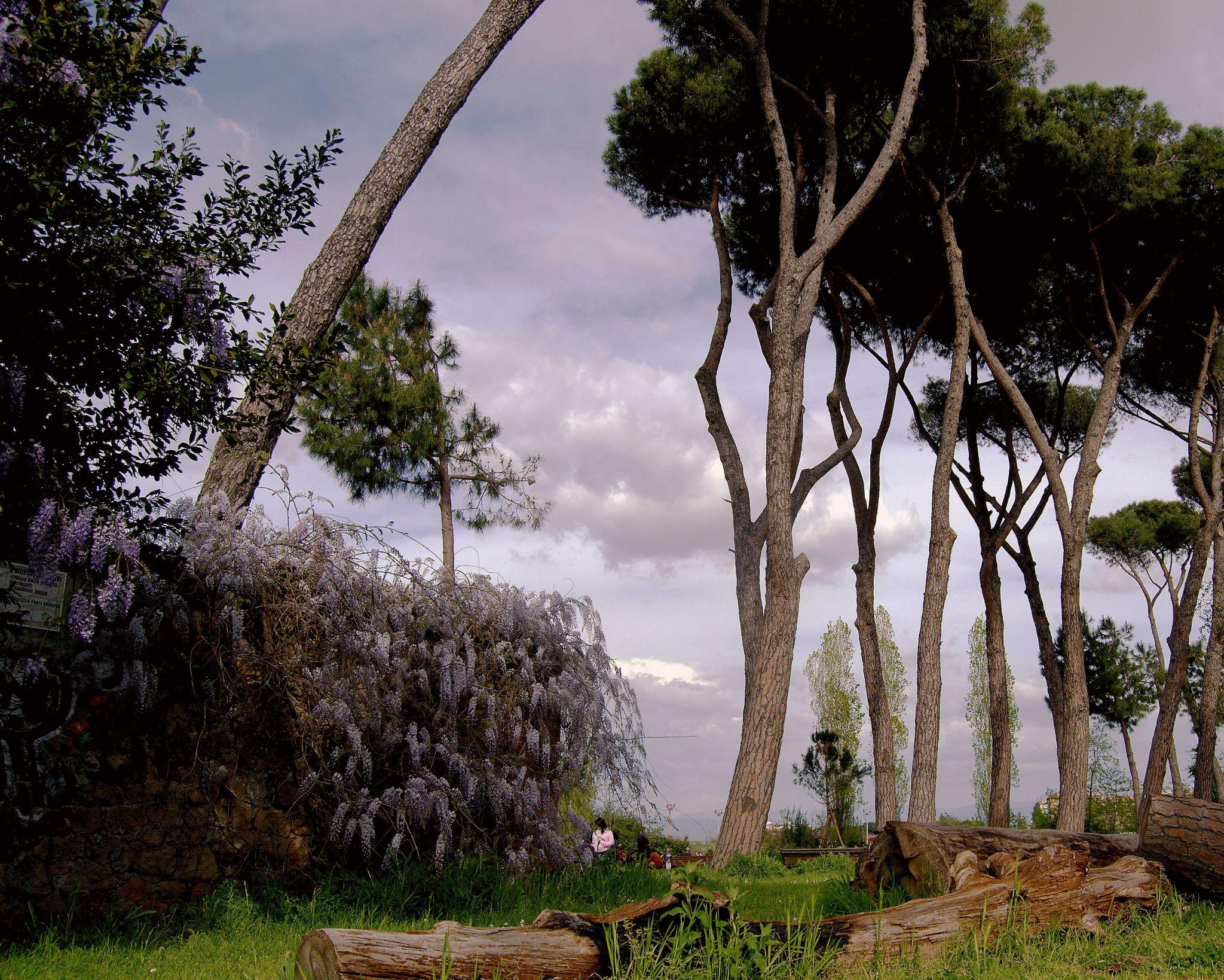 Urban landscape by PatriziaCortellessa