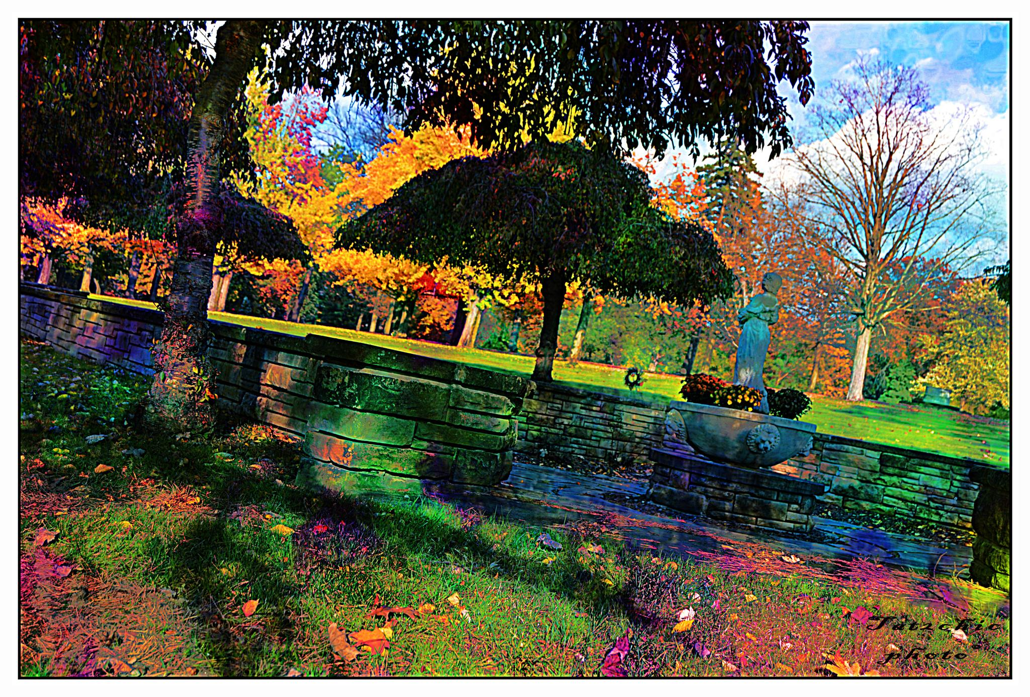 A colorful garden by candy.holenchick