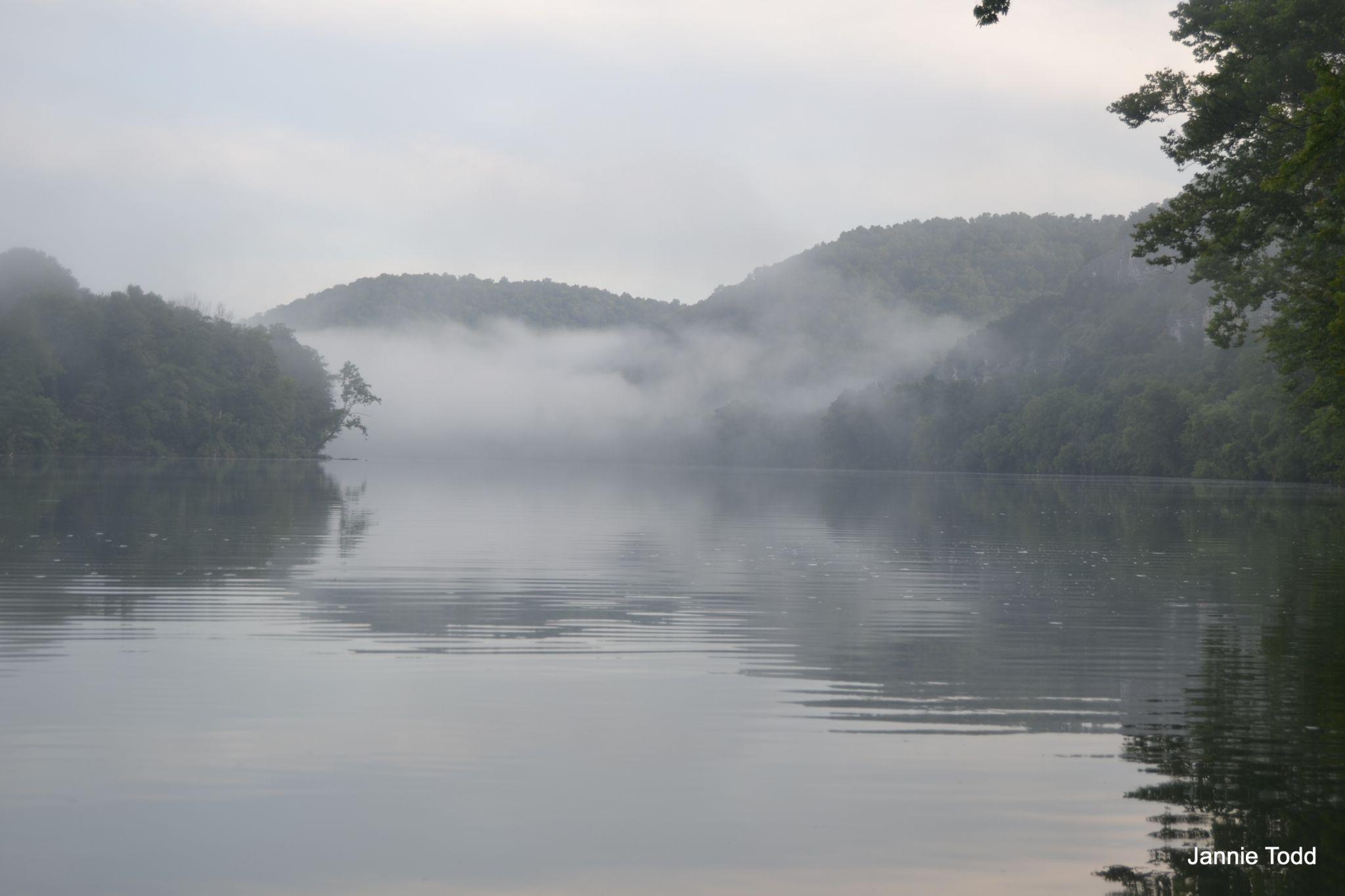 Foggy Morning by jannie.todd