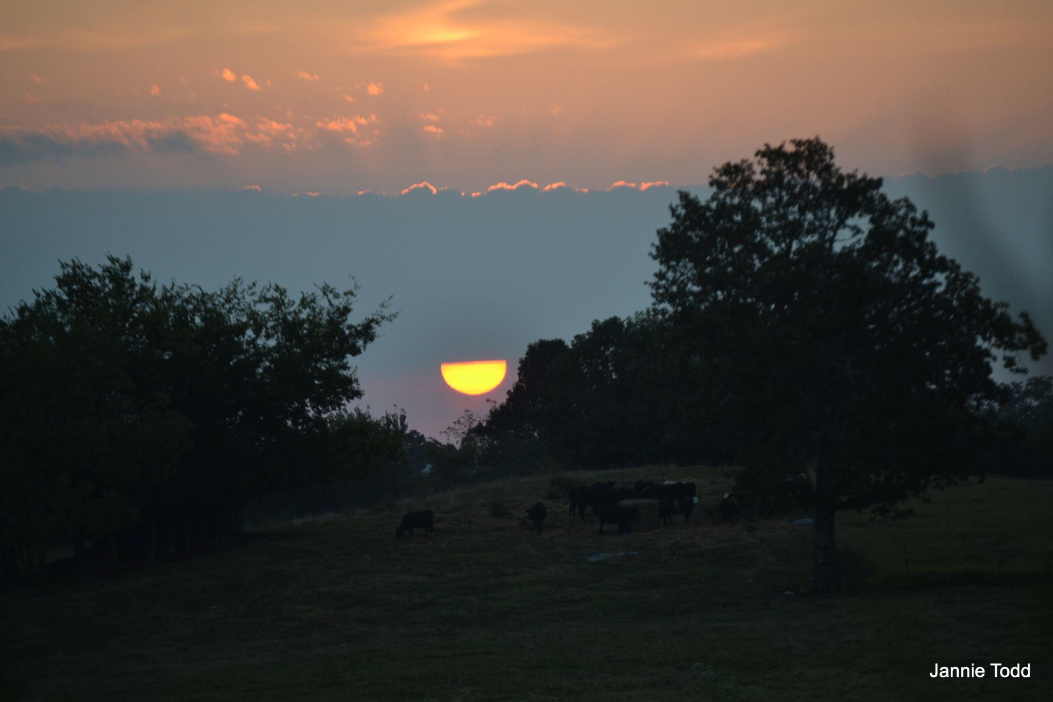 Half Sunrise by jannie.todd