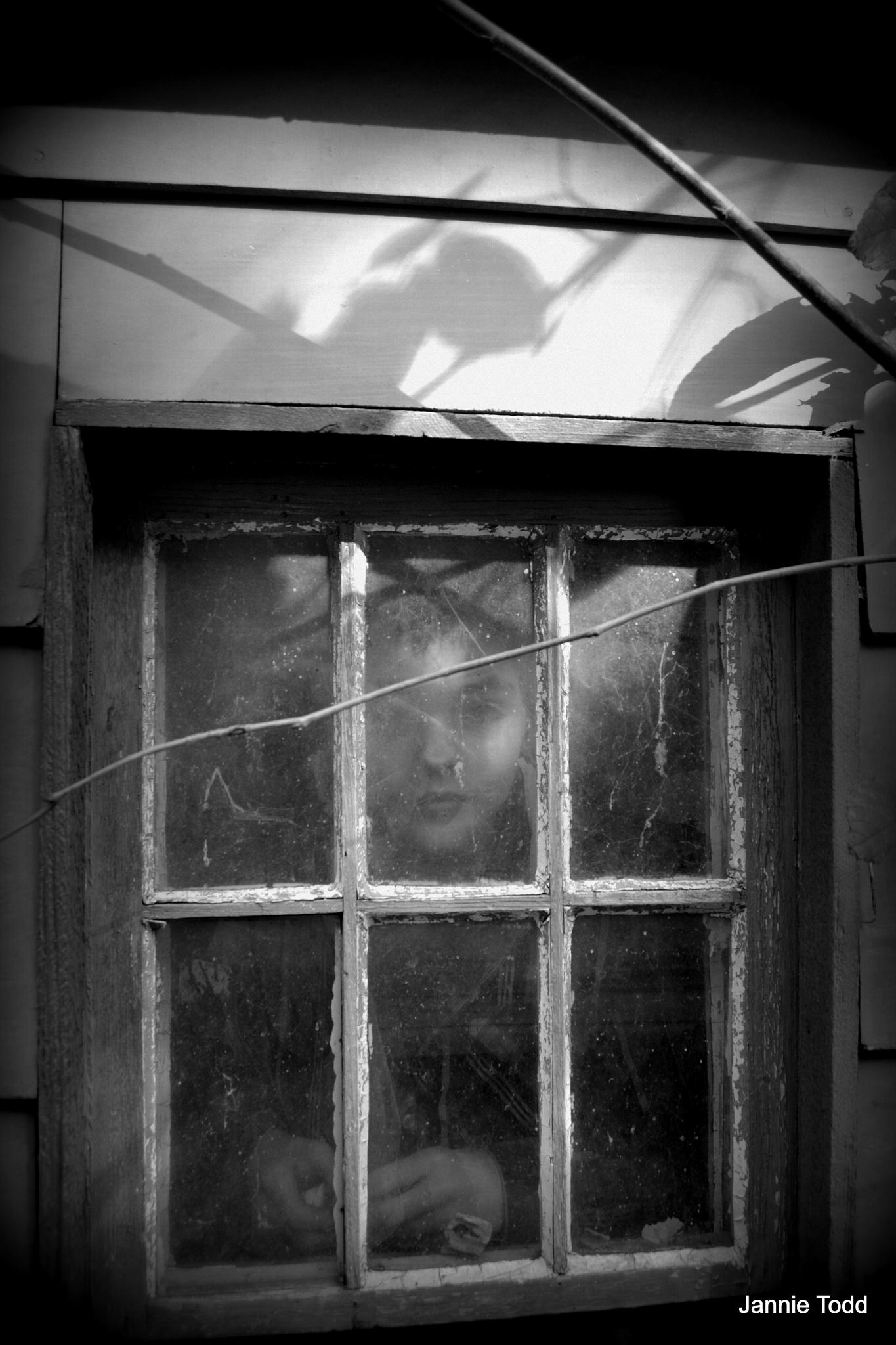 In the Window by jannie.todd