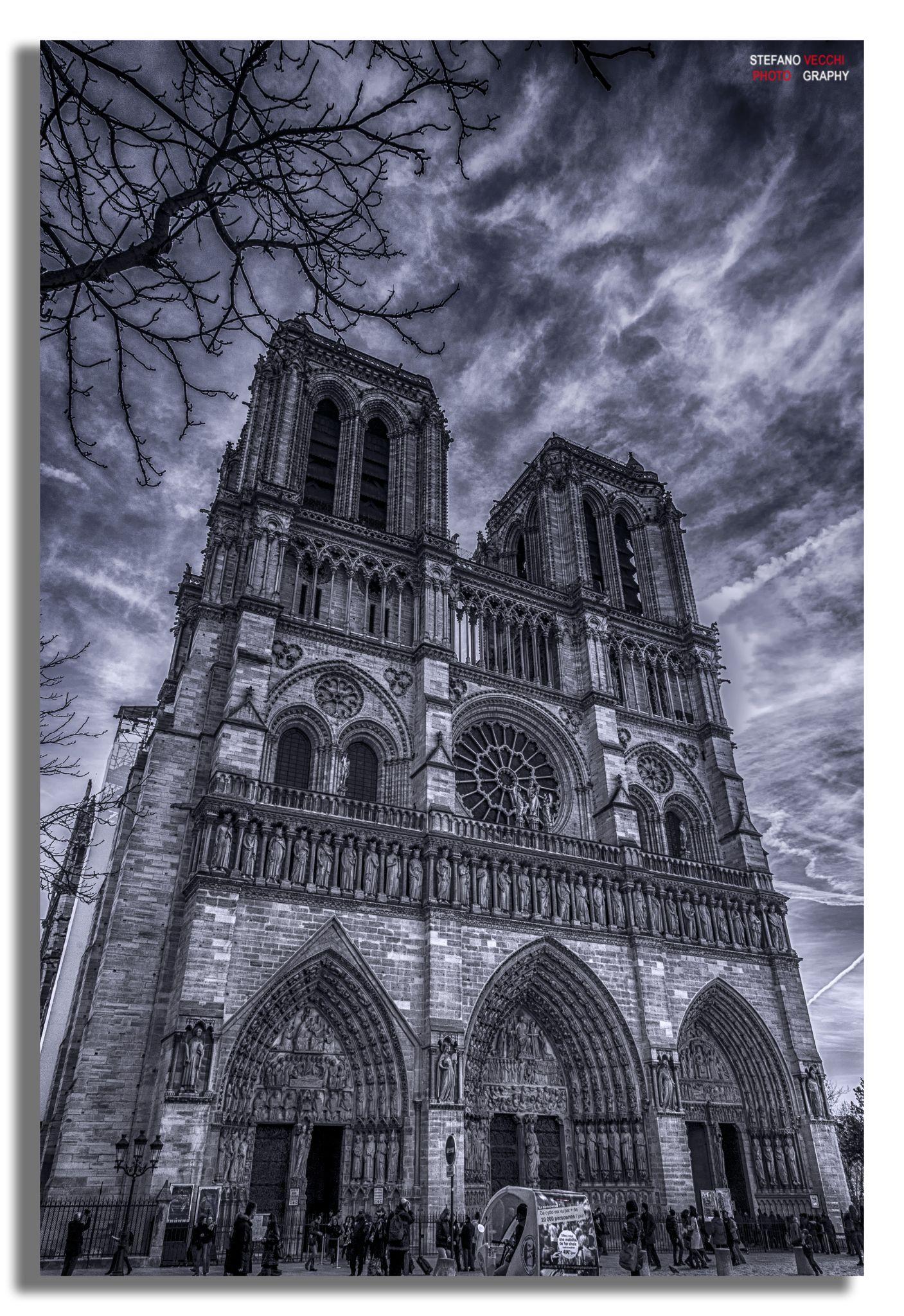 Notre Dame...... by stefano.vecchi.395