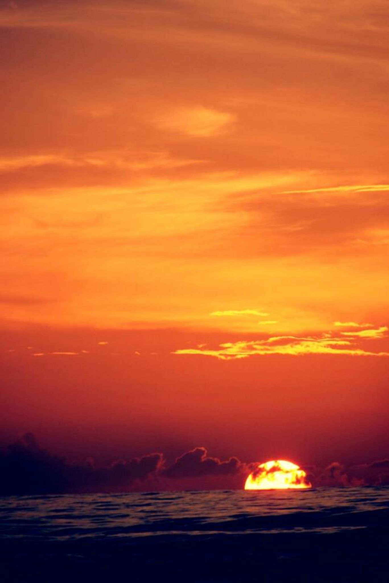 sunrise over the ocean by Chelsey Elizabeth