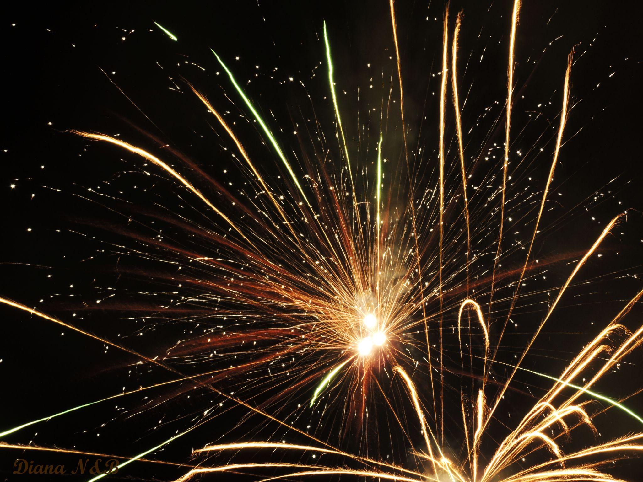 Firework by diana.adamyan.12