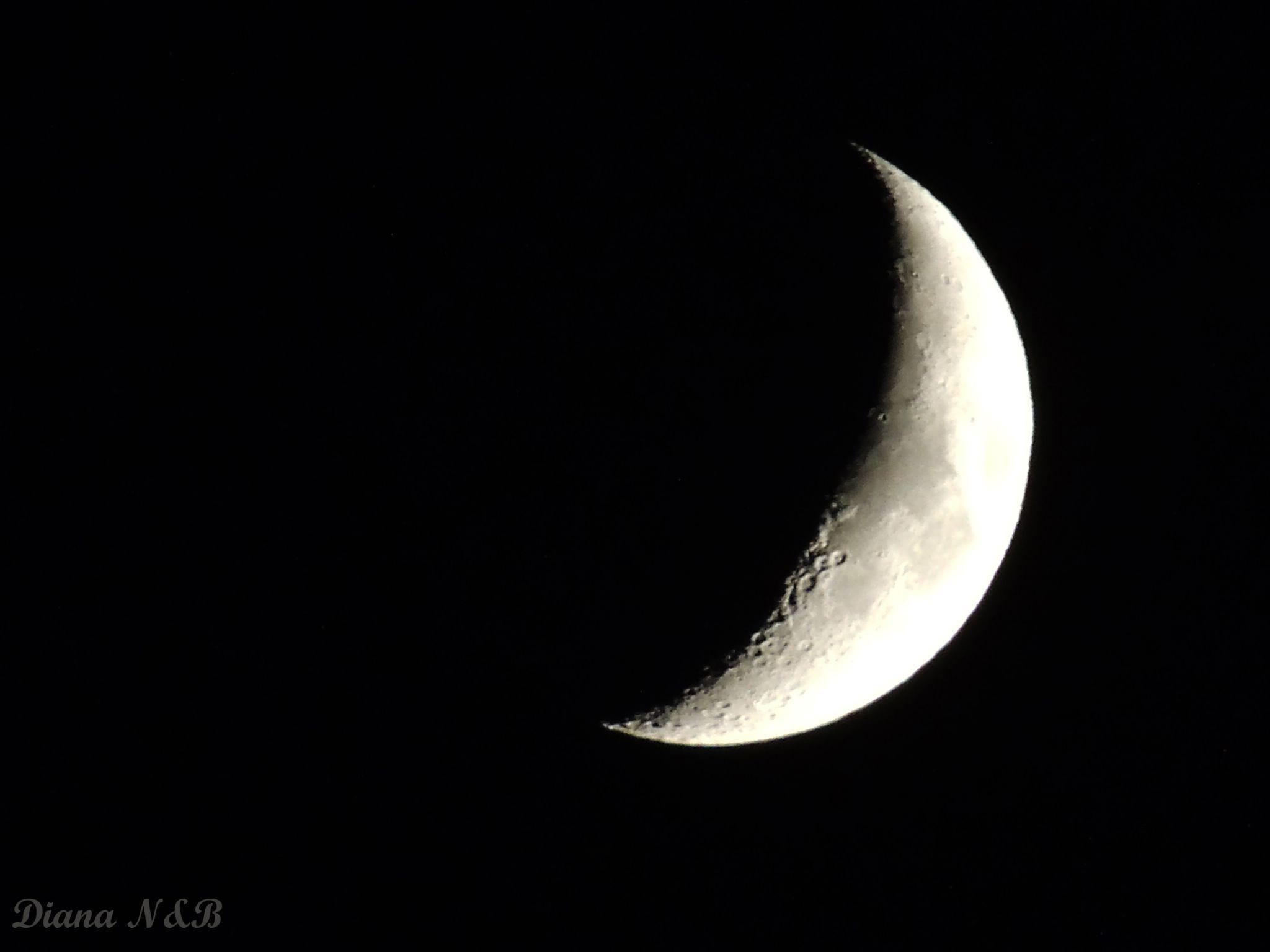 Moon  by diana.adamyan.12