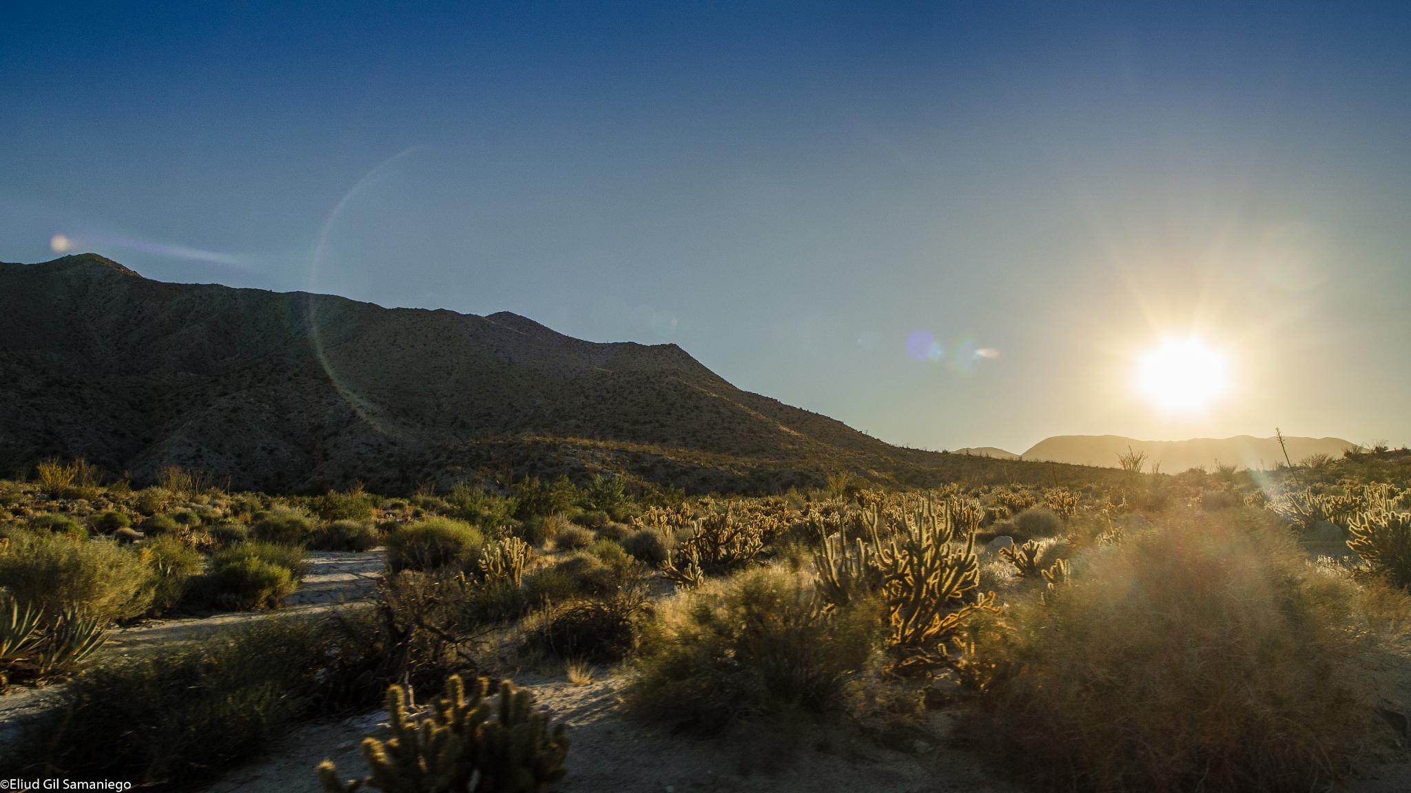 Sunset in the desert by David Eliud Gil Samaniego Maldonado
