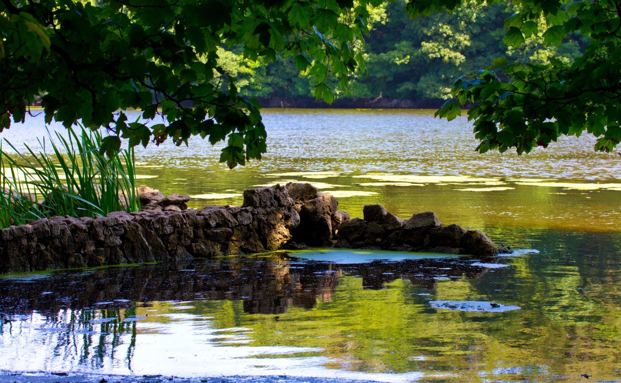 Lake wall by darron.sandell