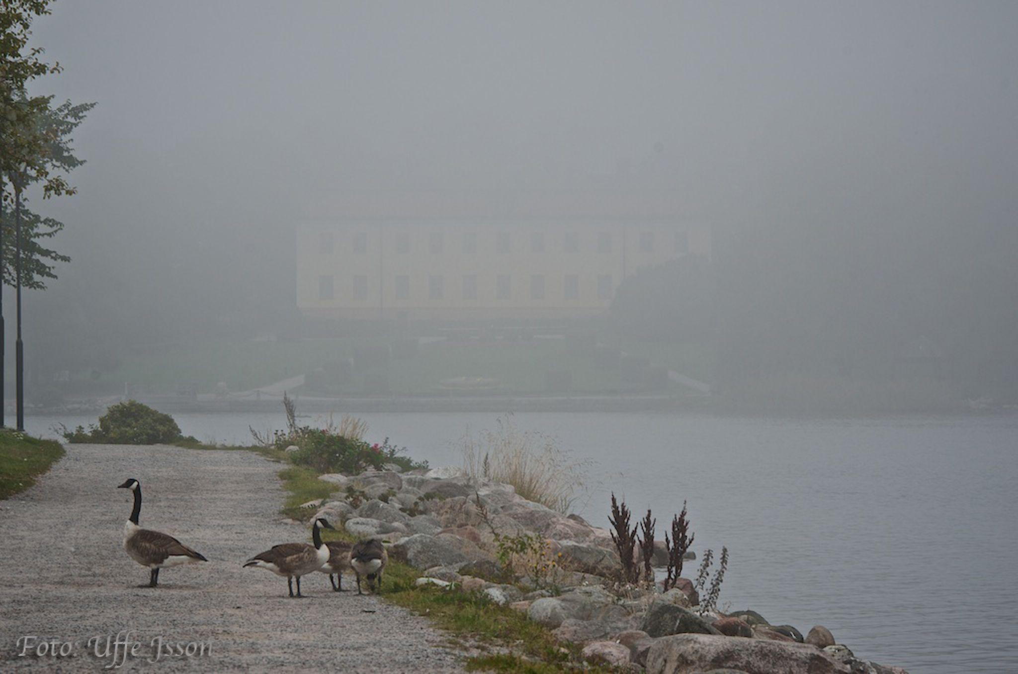 Edsbergs Castle 2014 by uffejsson