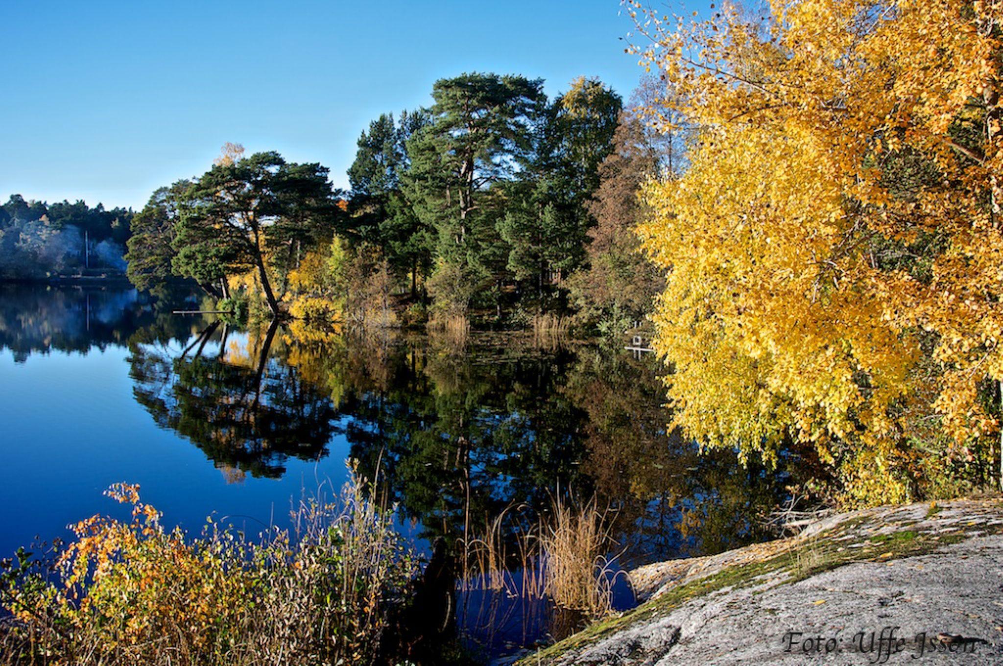 autumn by uffejsson