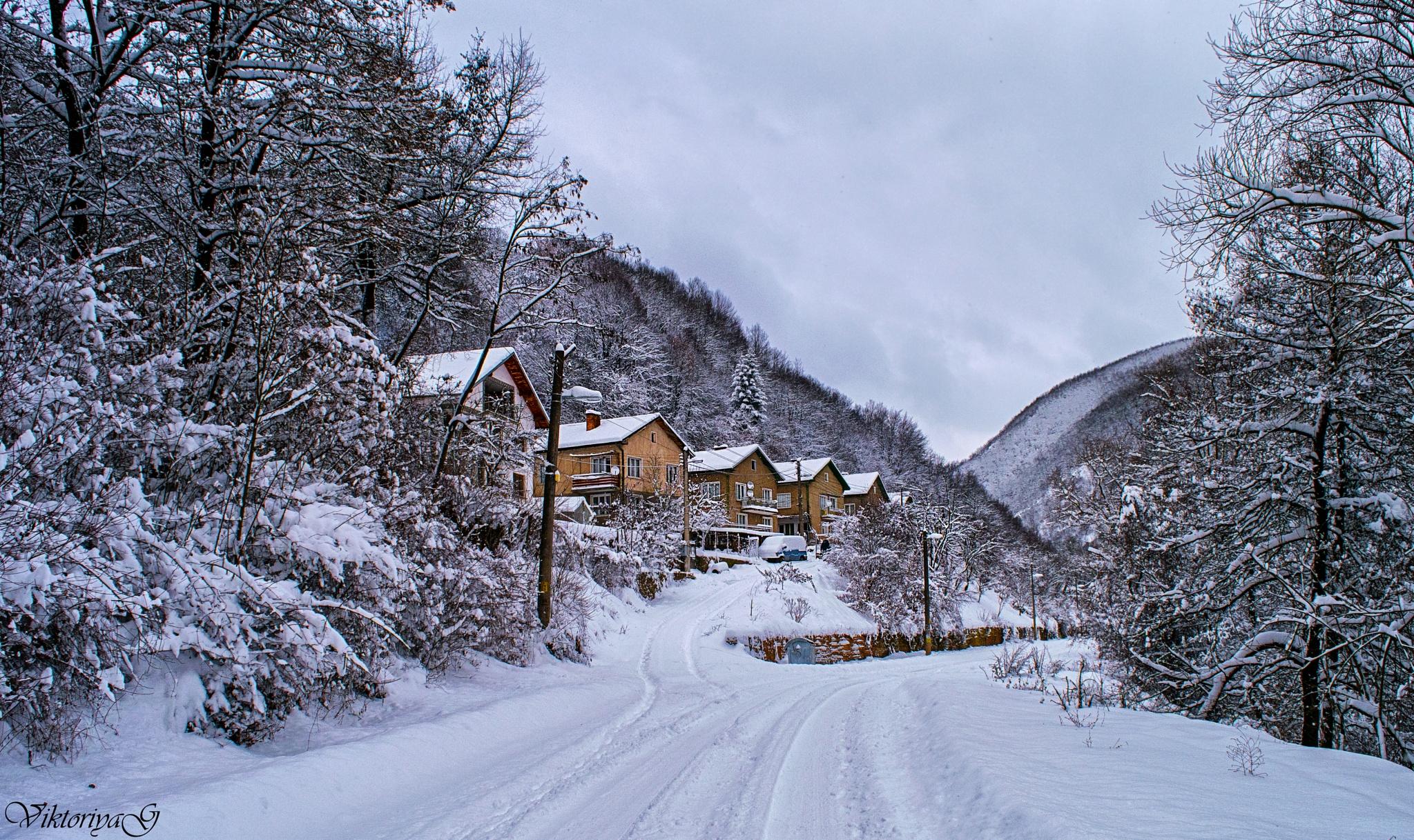 In the middle of winter by Viktoriya Georgieva