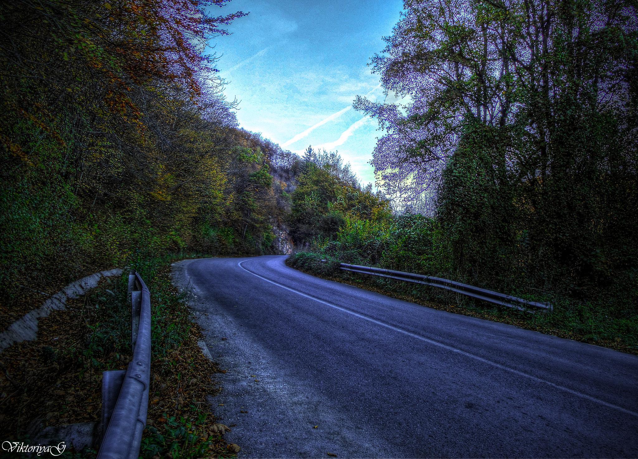 on the road by Viktoriya Georgieva