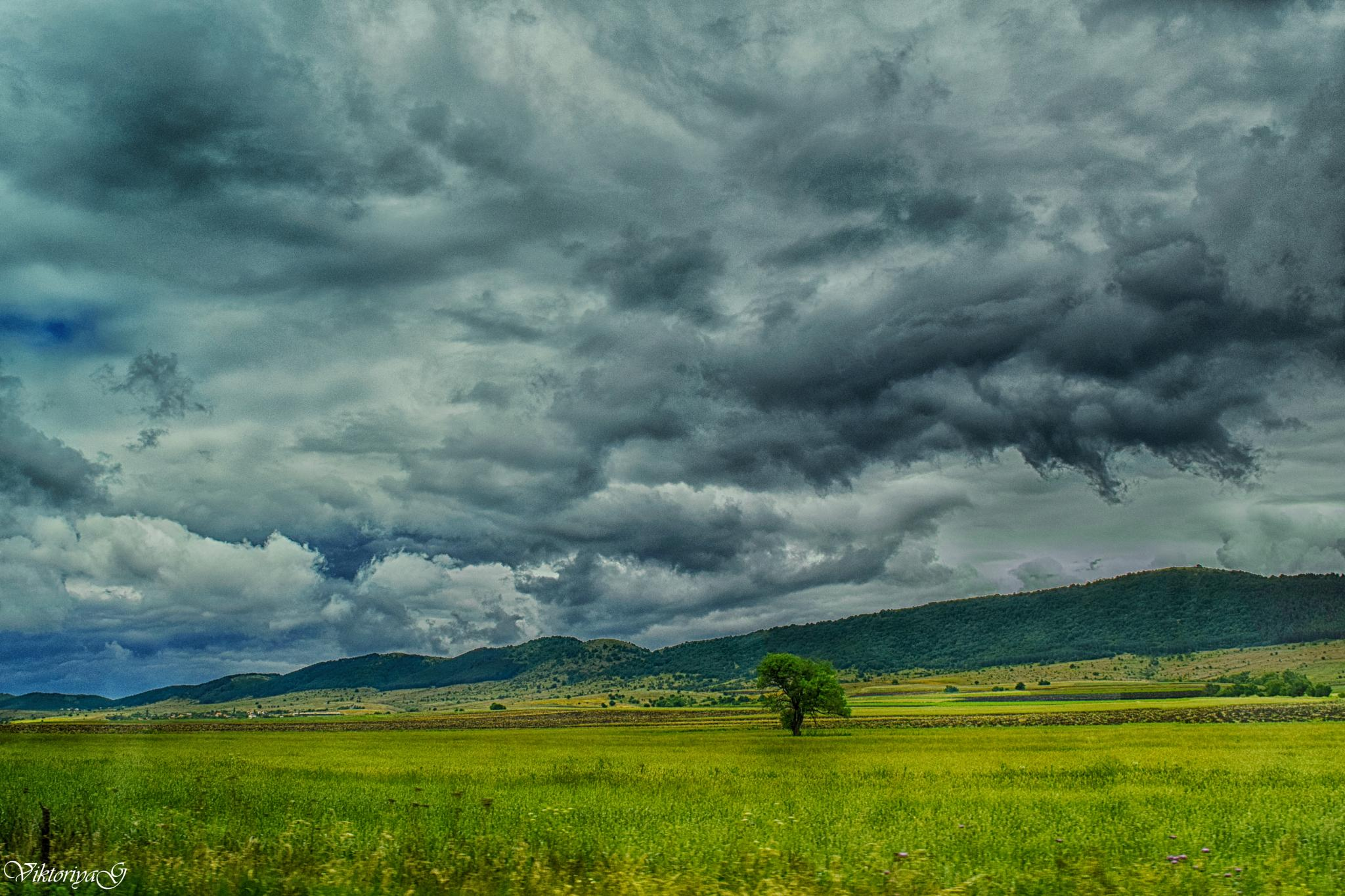 Waiting for storm by Viktoriya Georgieva