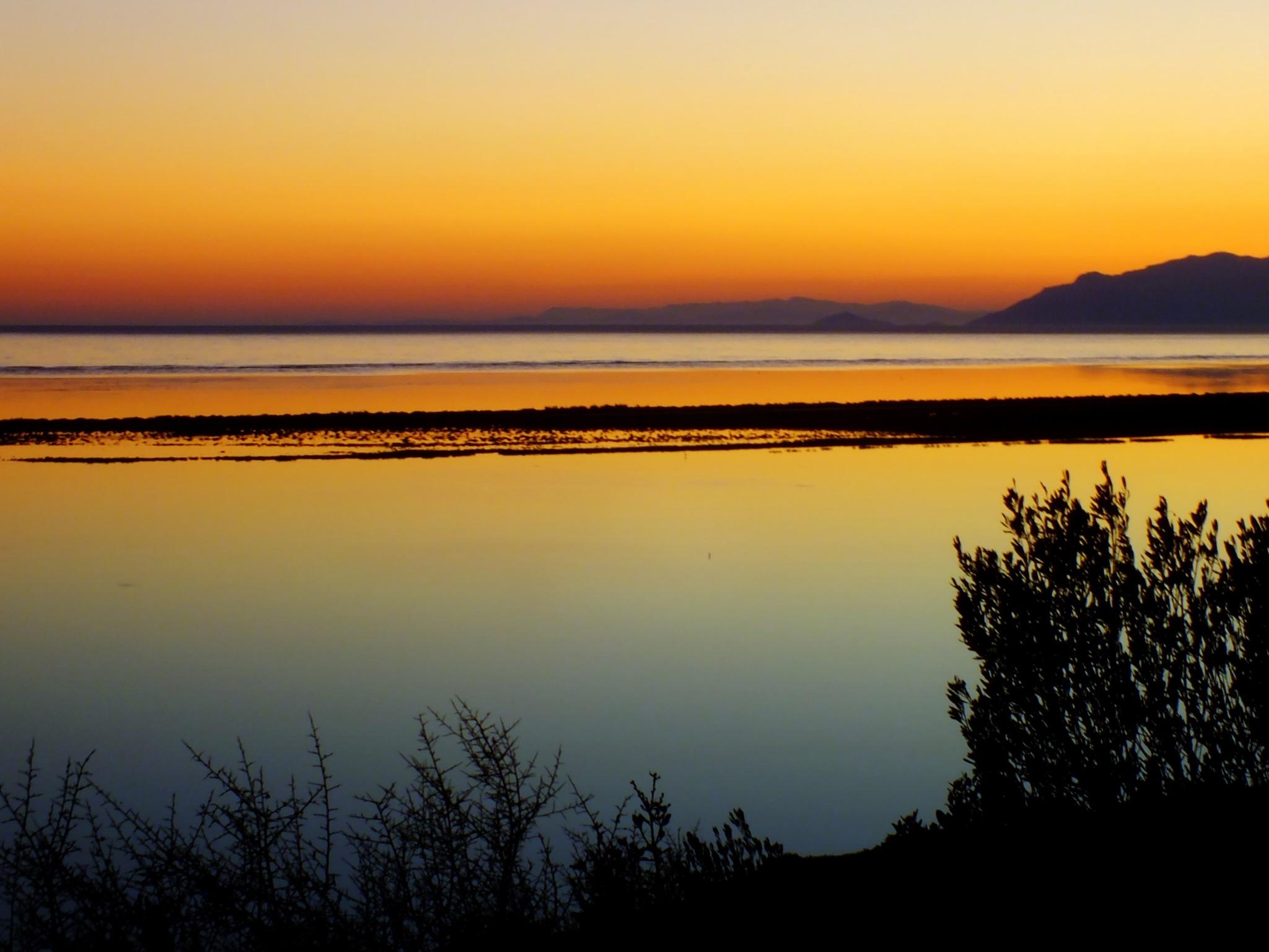 NEHİR VE DENİZ (River & Sea) by nedim alkan