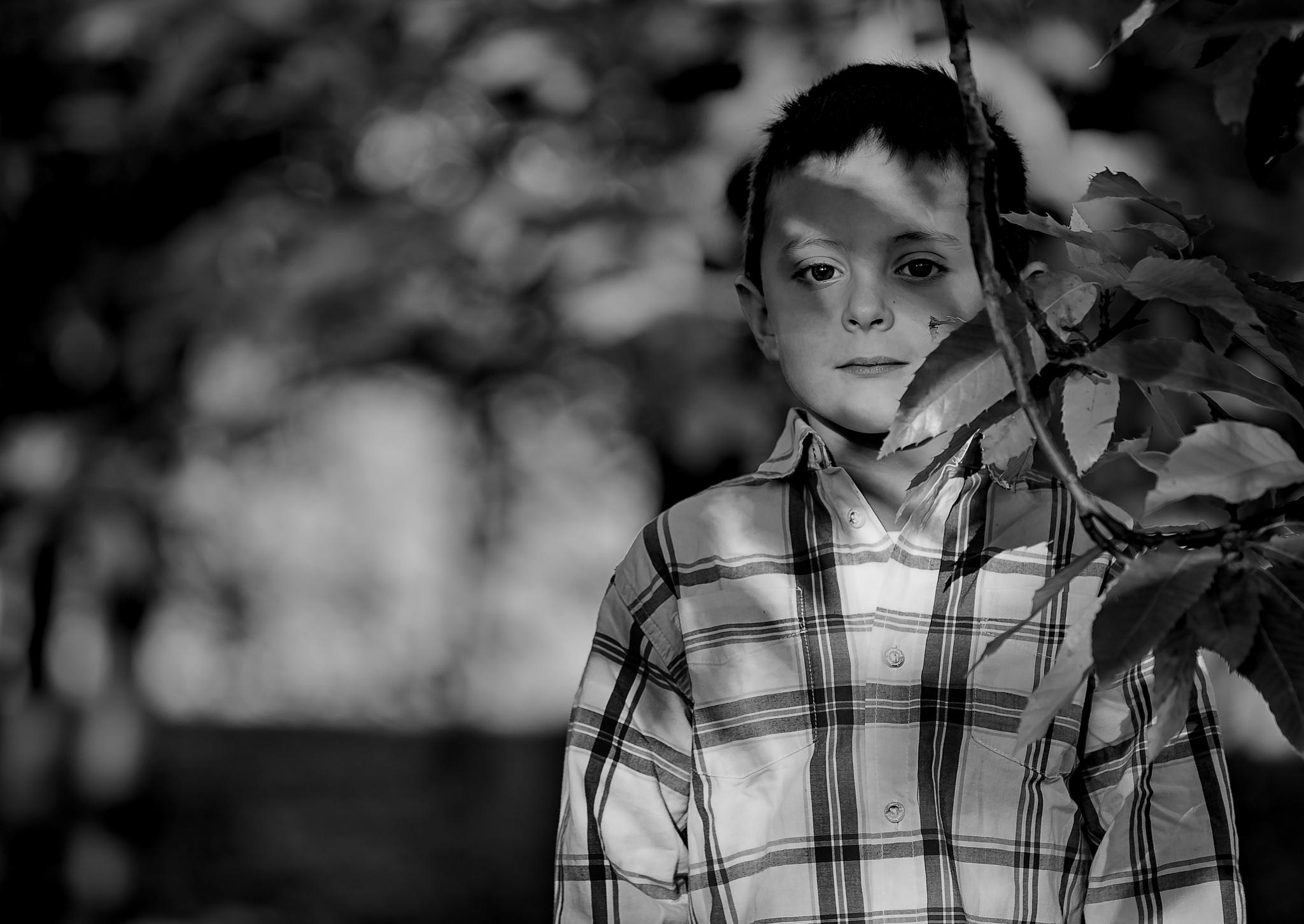 Tommi 2015© by fabio.forneris