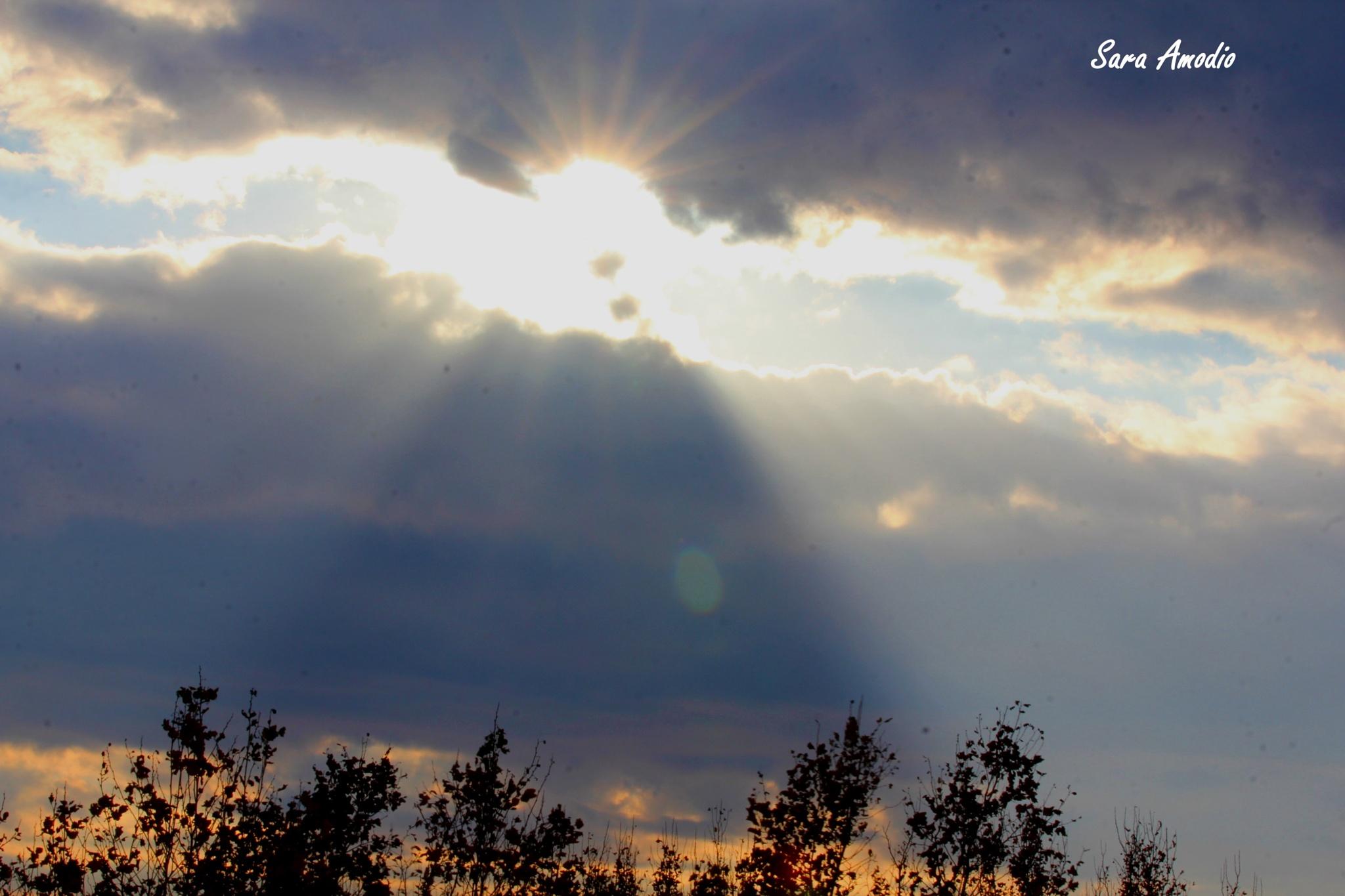 trapped sun by sara.amodio.77
