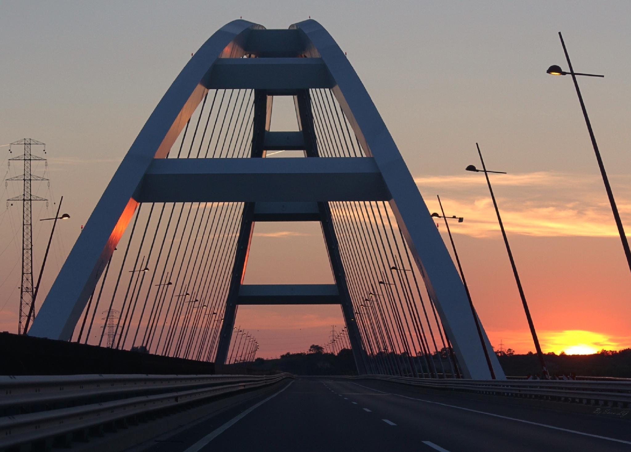 Bridge to the Sun by Somogyi Lajos Gábor