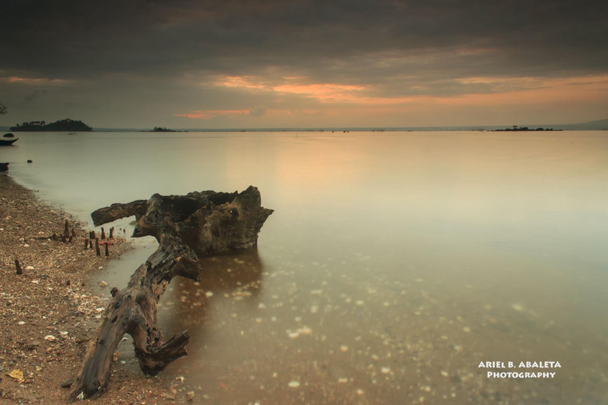 Remnants by ariel.abaleta