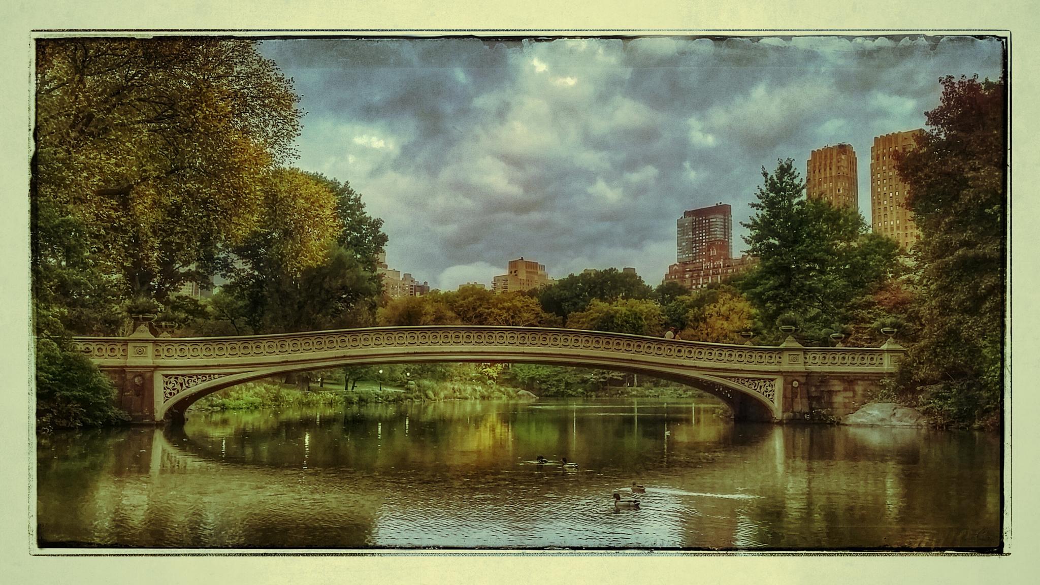 bridge central park by johan.wolfard