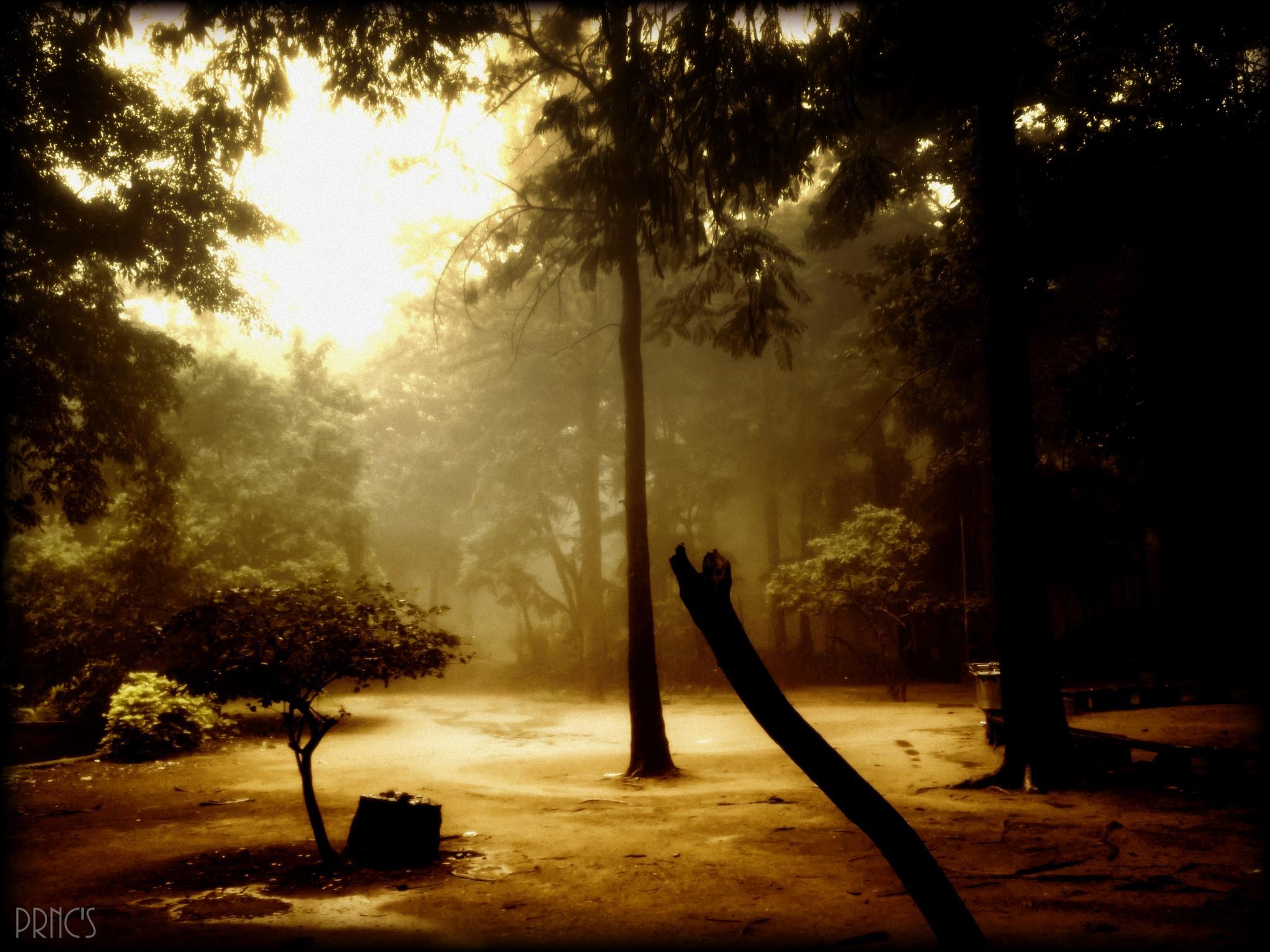 Cloudy by pavan.prnc