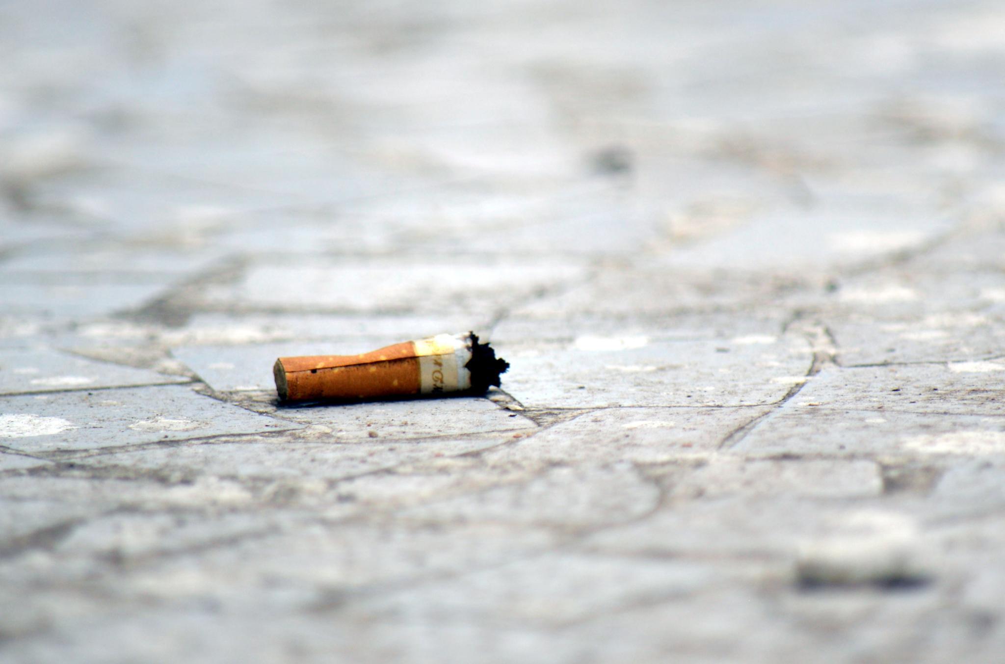 Smoking Kills by tejas.patel.9235199