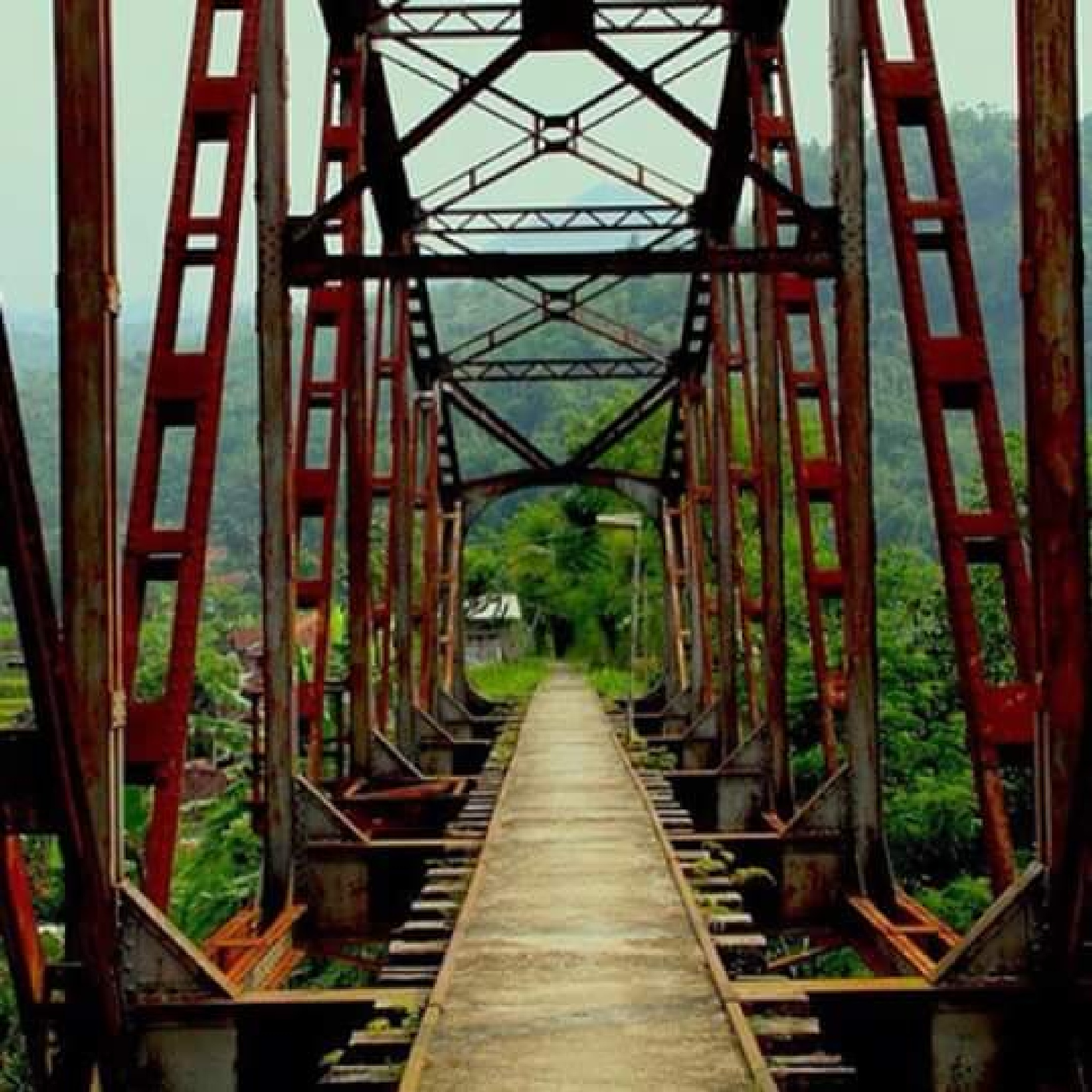 it's the way now by Ali Syarief