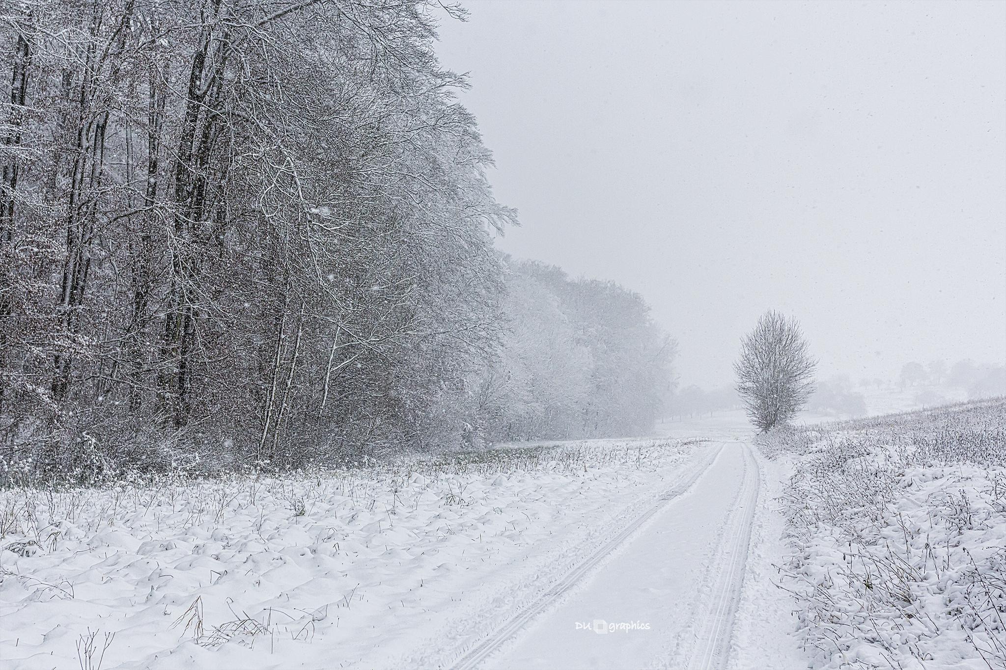 snowroad in winter 2014 by daniel u.