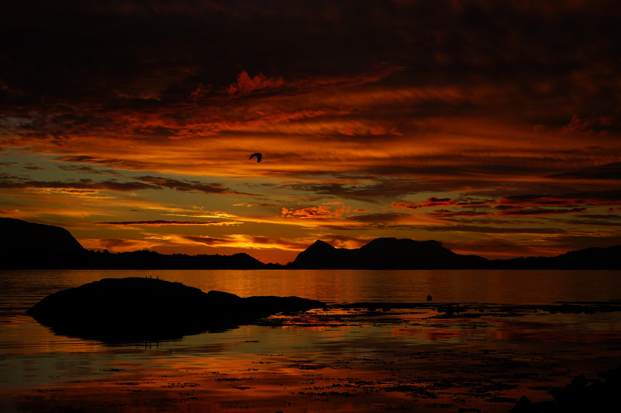 Late evening by Elisabeth Tennøy