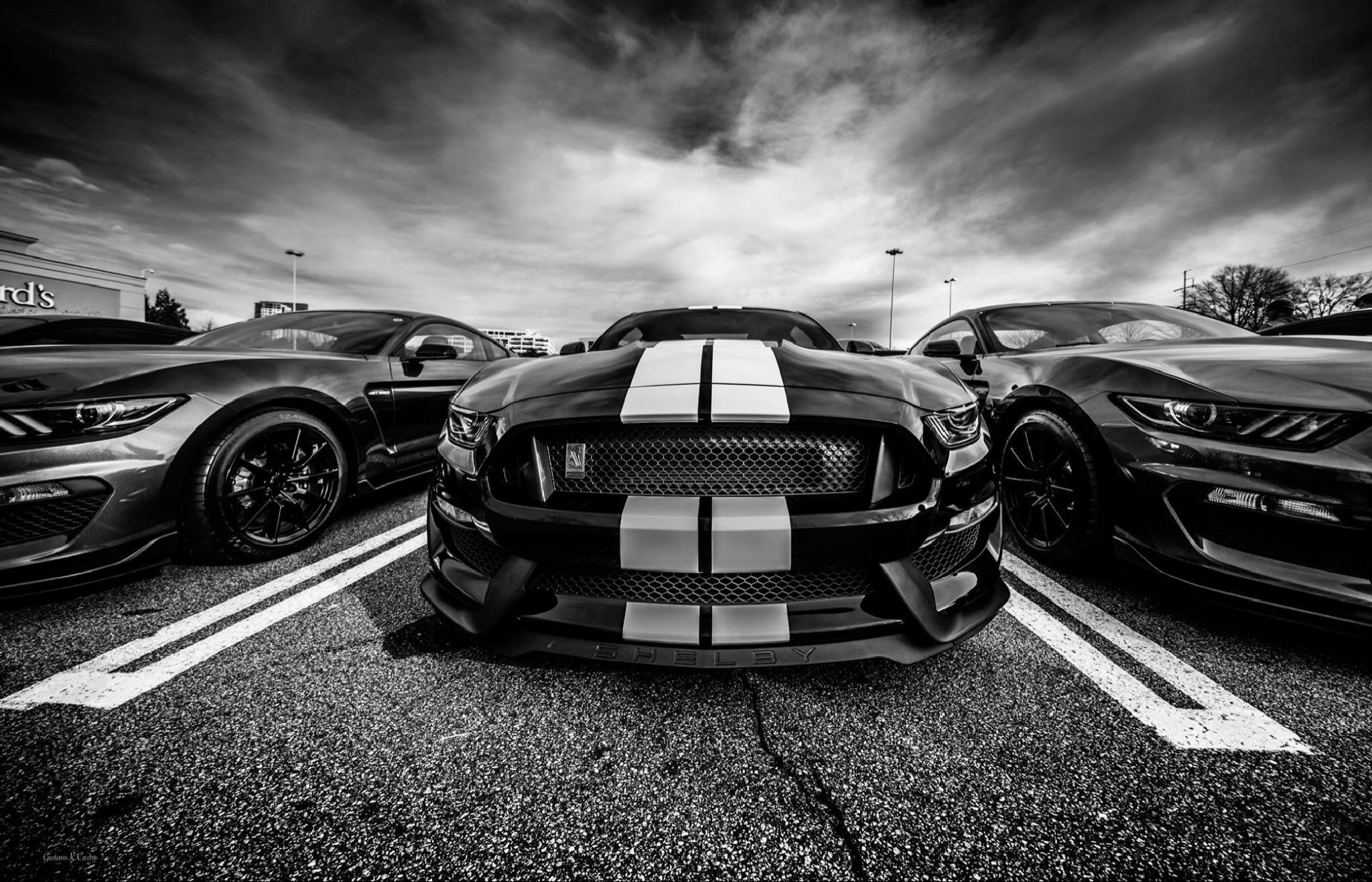 Mustang gt 350 by gustavorene.castro