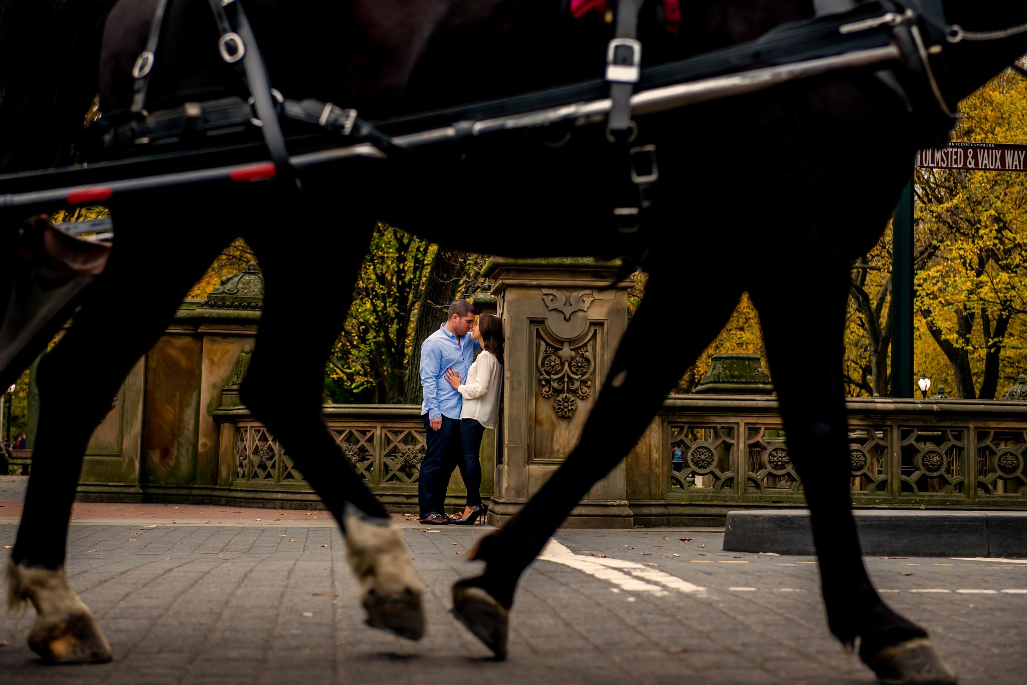 Photo in Wedding #esession #central park #horse