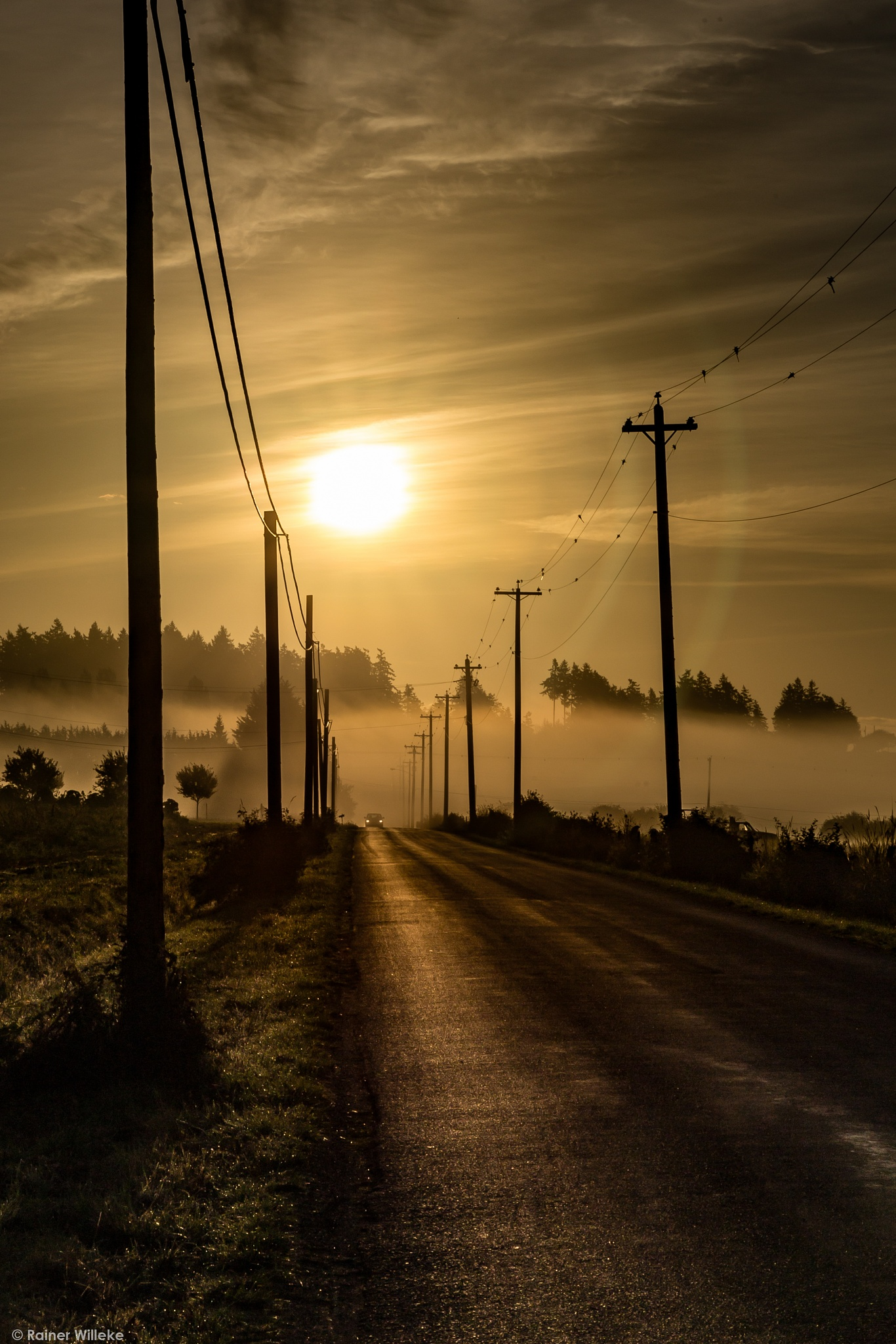 Photo in Landscape #road #sun #mist #perspective