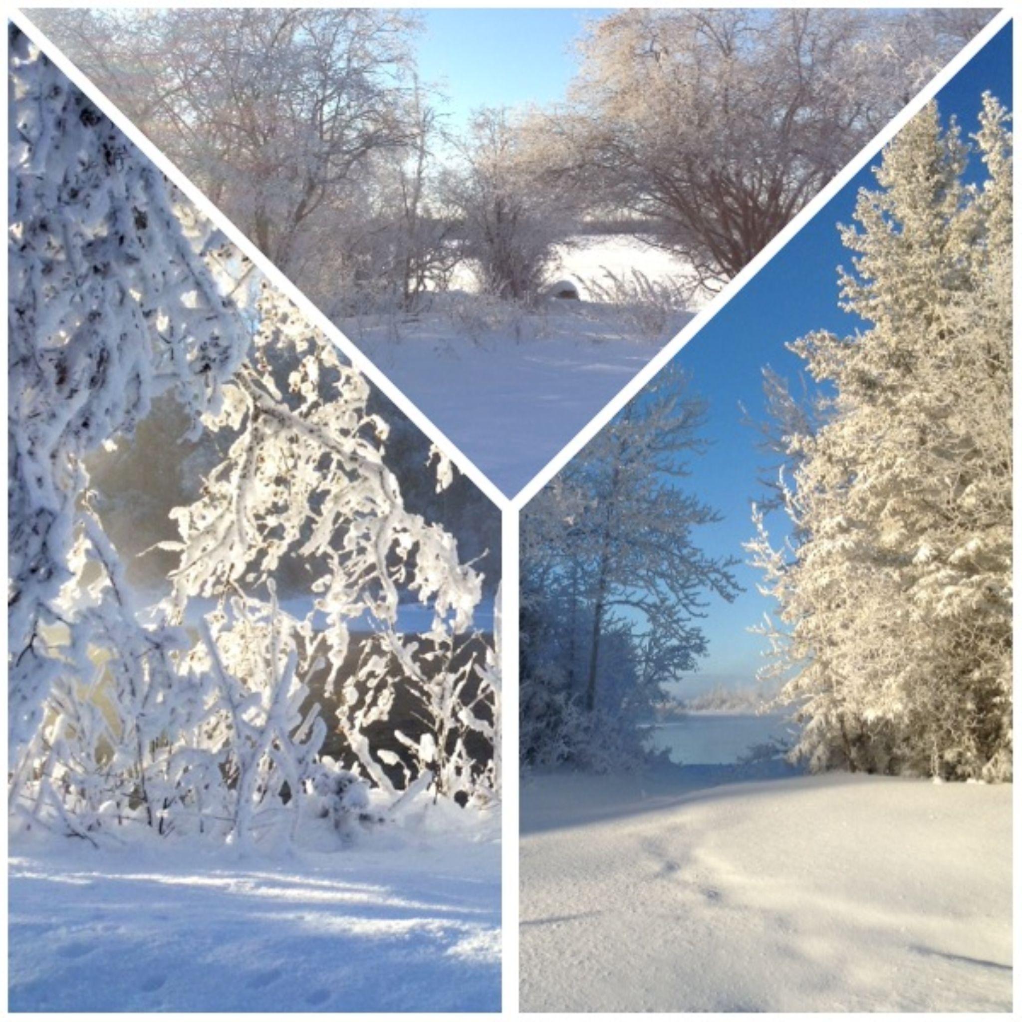 Winter In La Ronge by Annette McCann