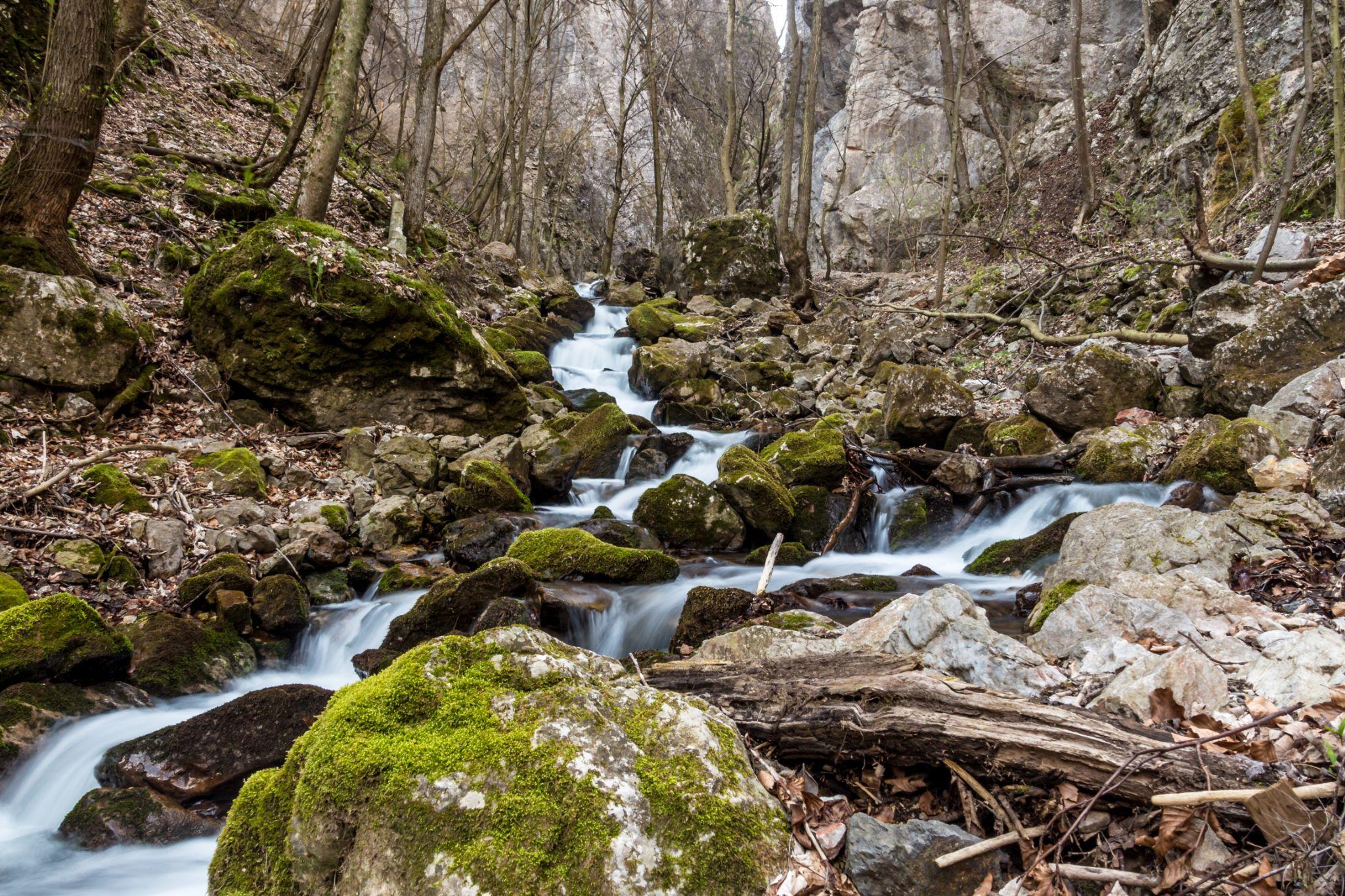 Water stream in Zadiel valley by Laco Hubaty