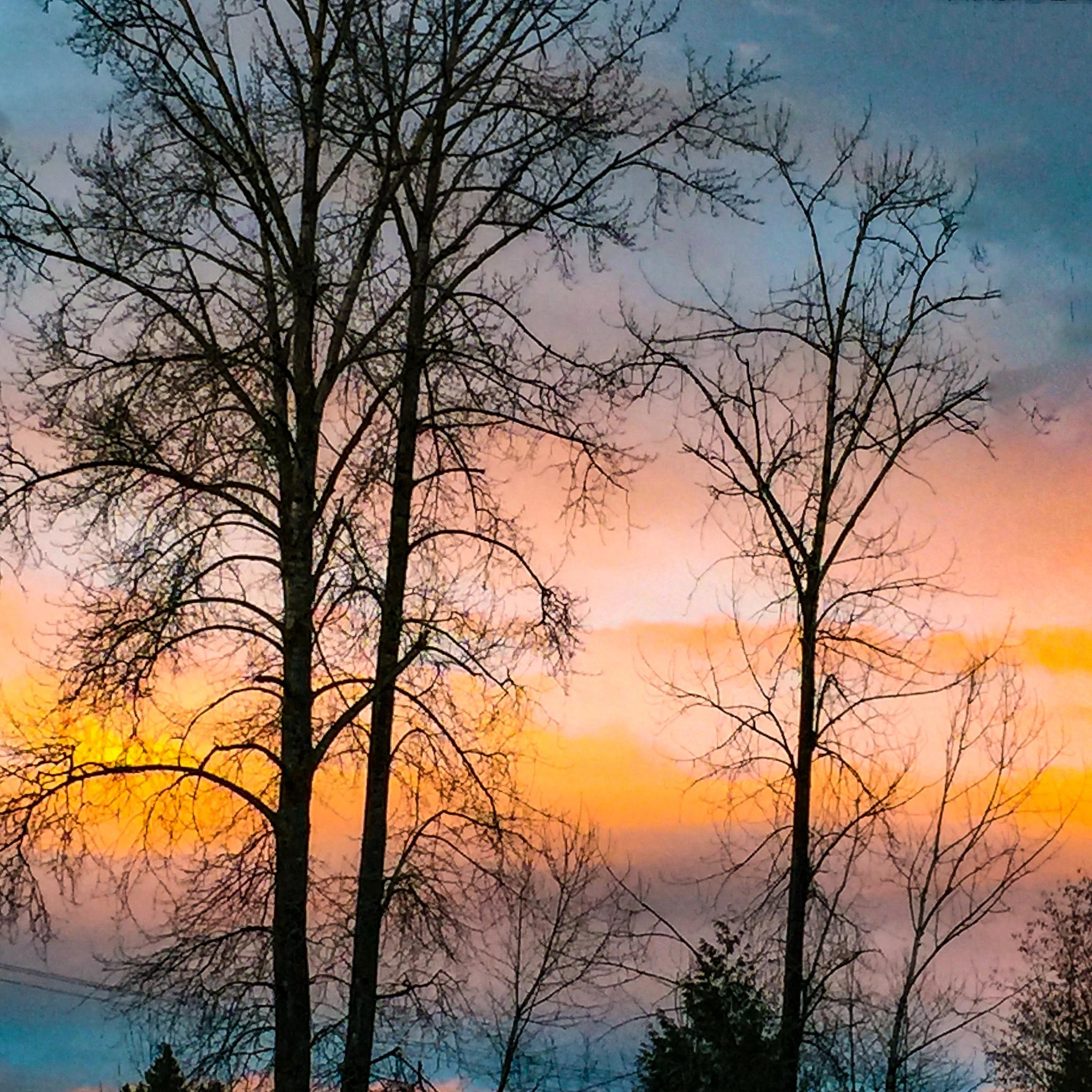 Sunset in my neighbourhood by Metro Van Primus