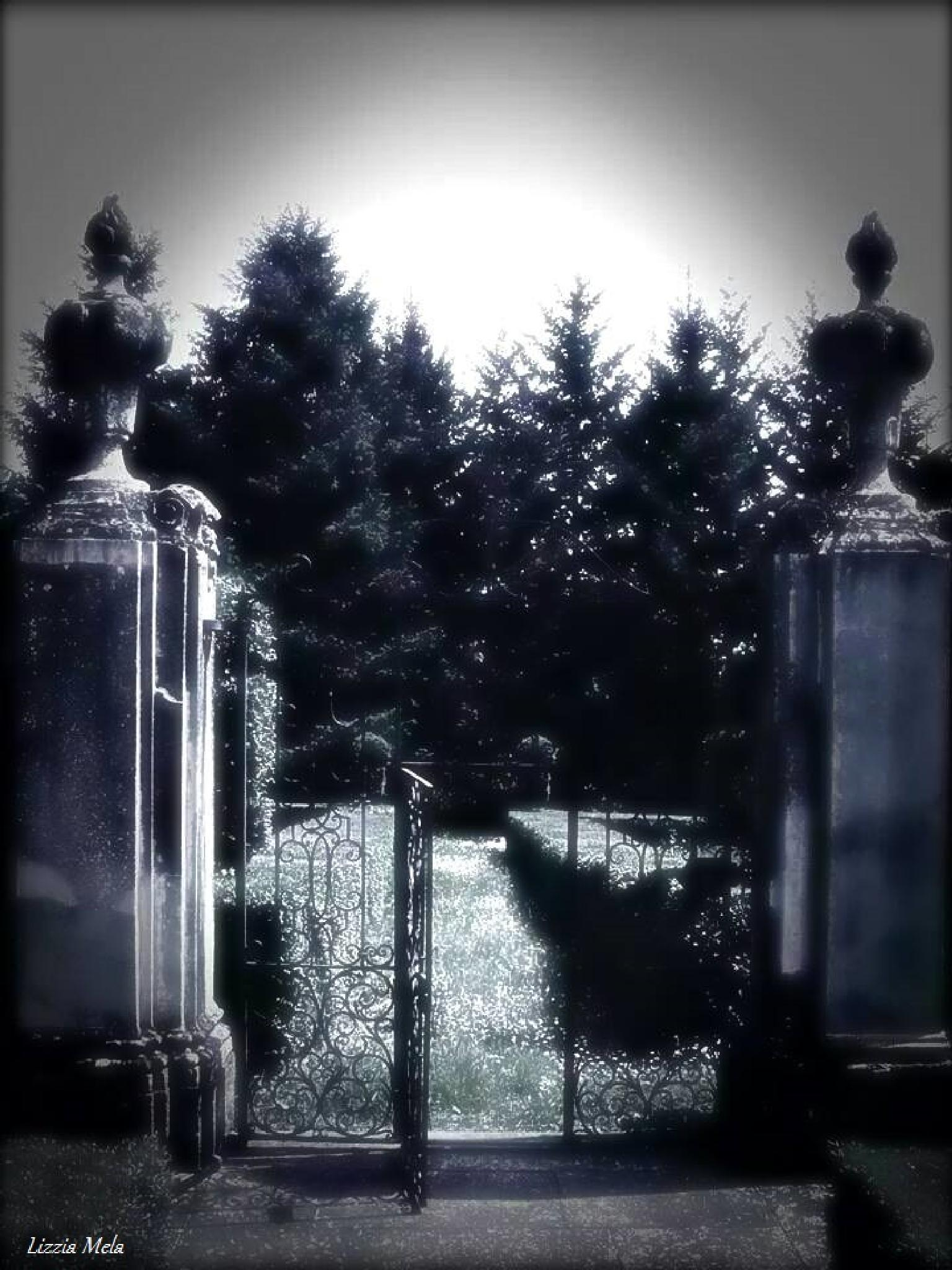 Private cemetery (Rivalta - Piacenza, Italy) by lizzia.mela