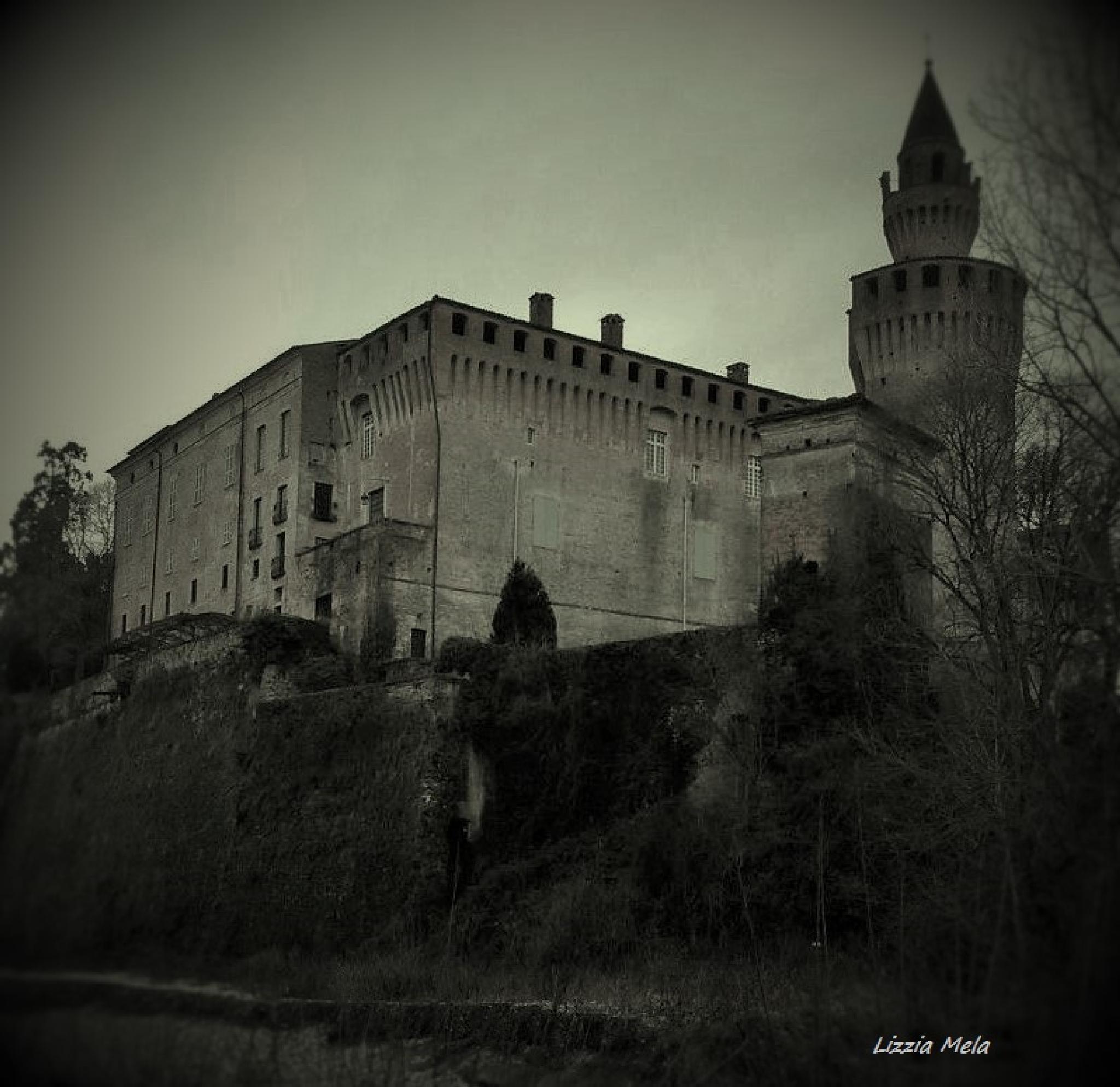 Rivalta castle (Piacenza - Italy) by lizzia.mela