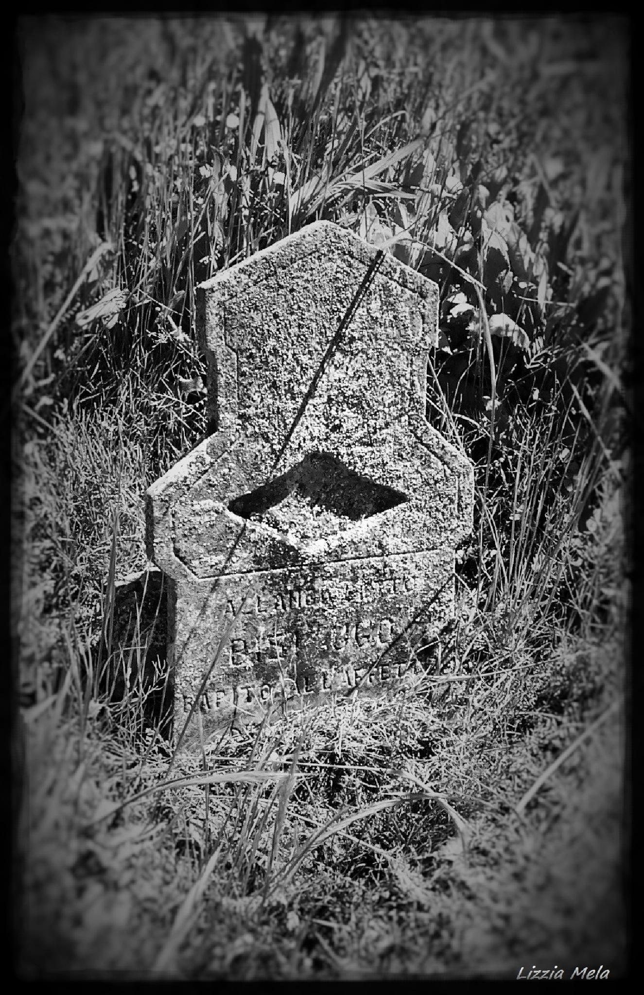 Verdeto cemetery (Piacenza - Italy) by lizzia.mela