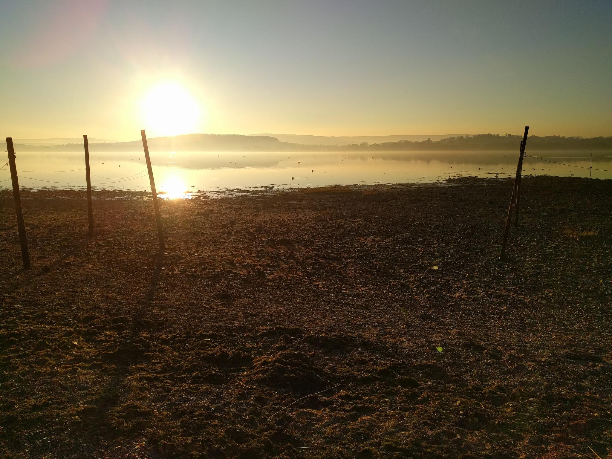 misty lympstone estuary by tom salt