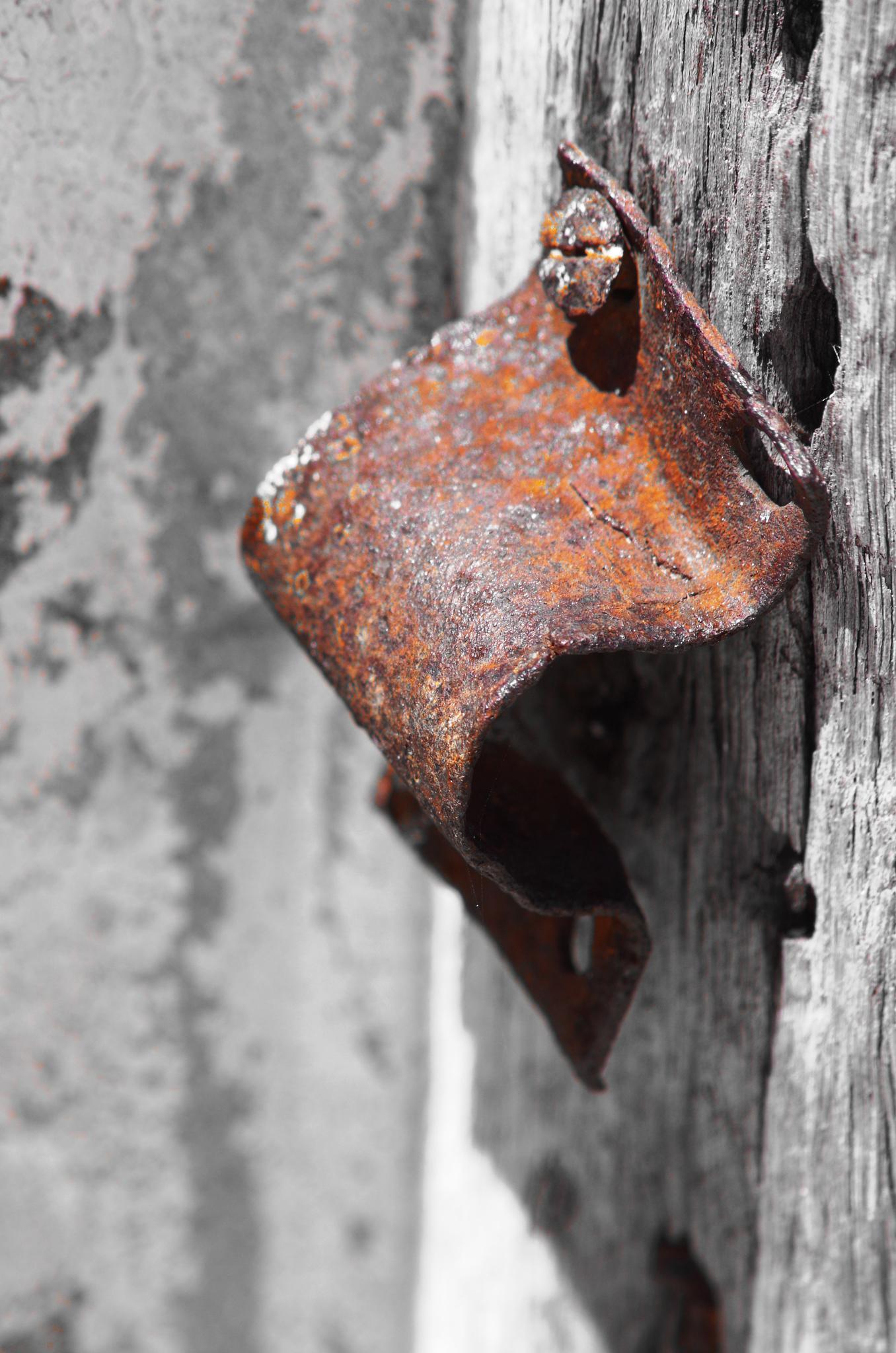 rusty door hinge.... by cinzia.sawatzky