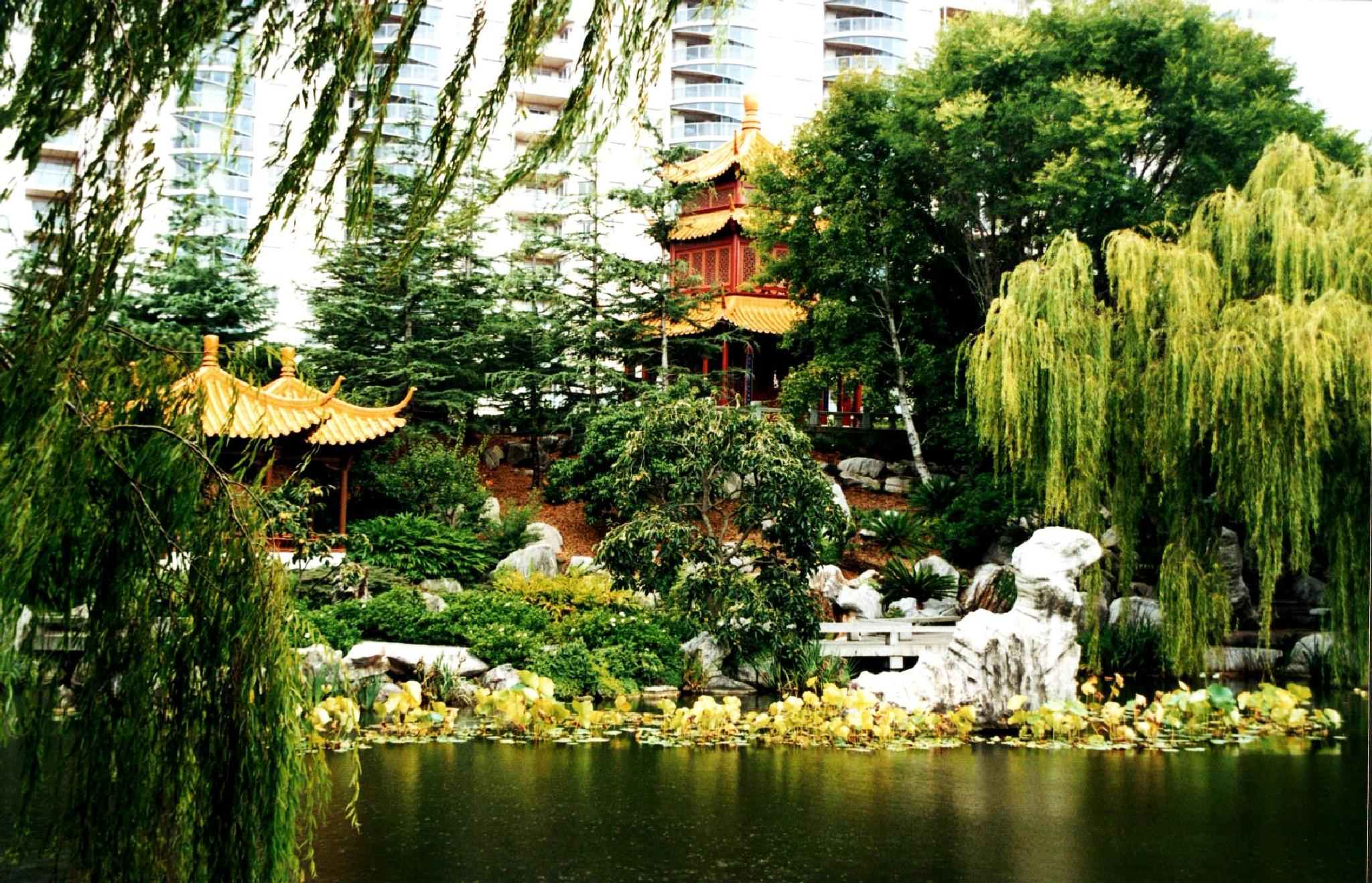 Chinese Gardens  by cinzia.sawatzky