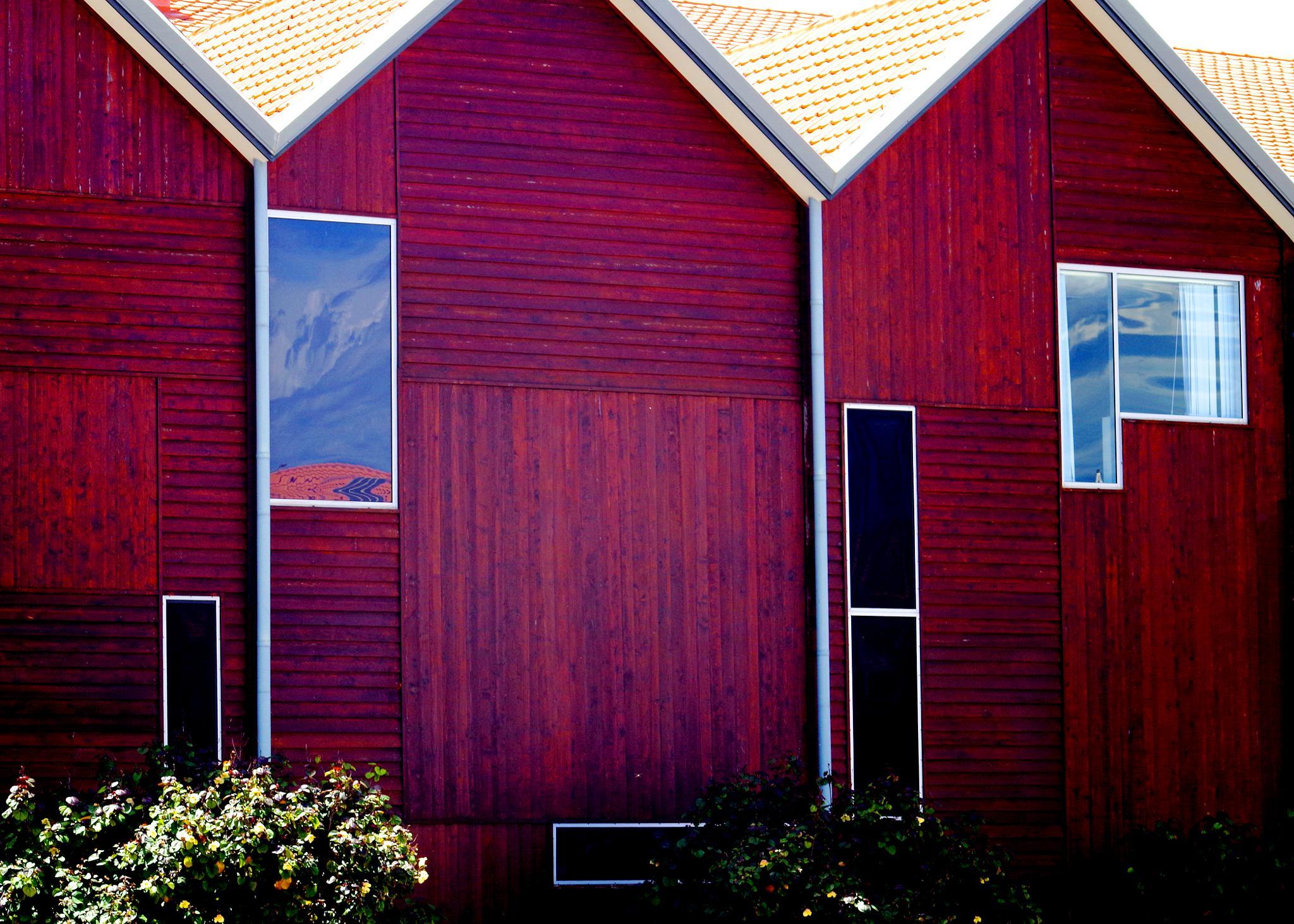 Windows by cinzia.sawatzky