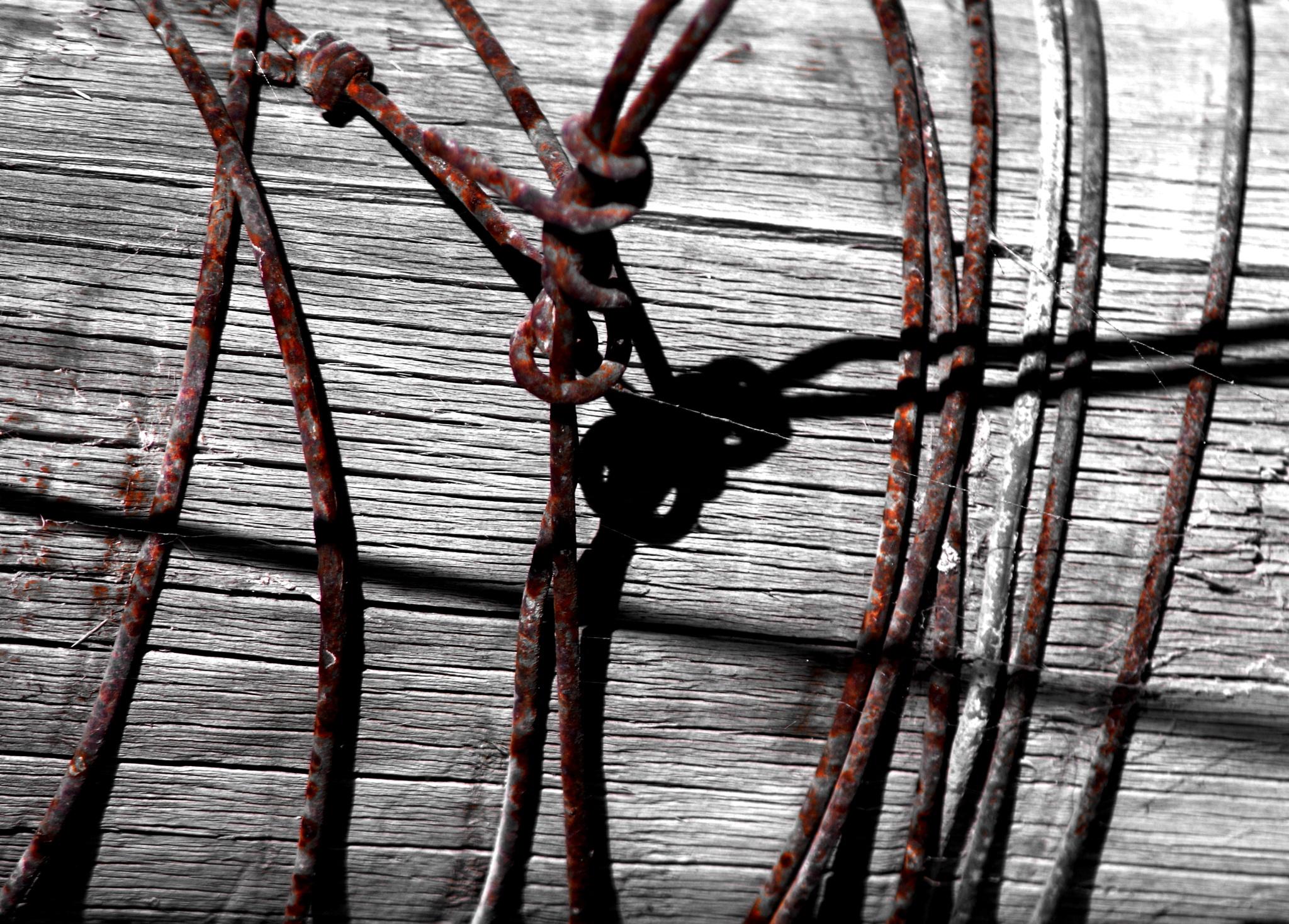 rusty lines by cinzia.sawatzky