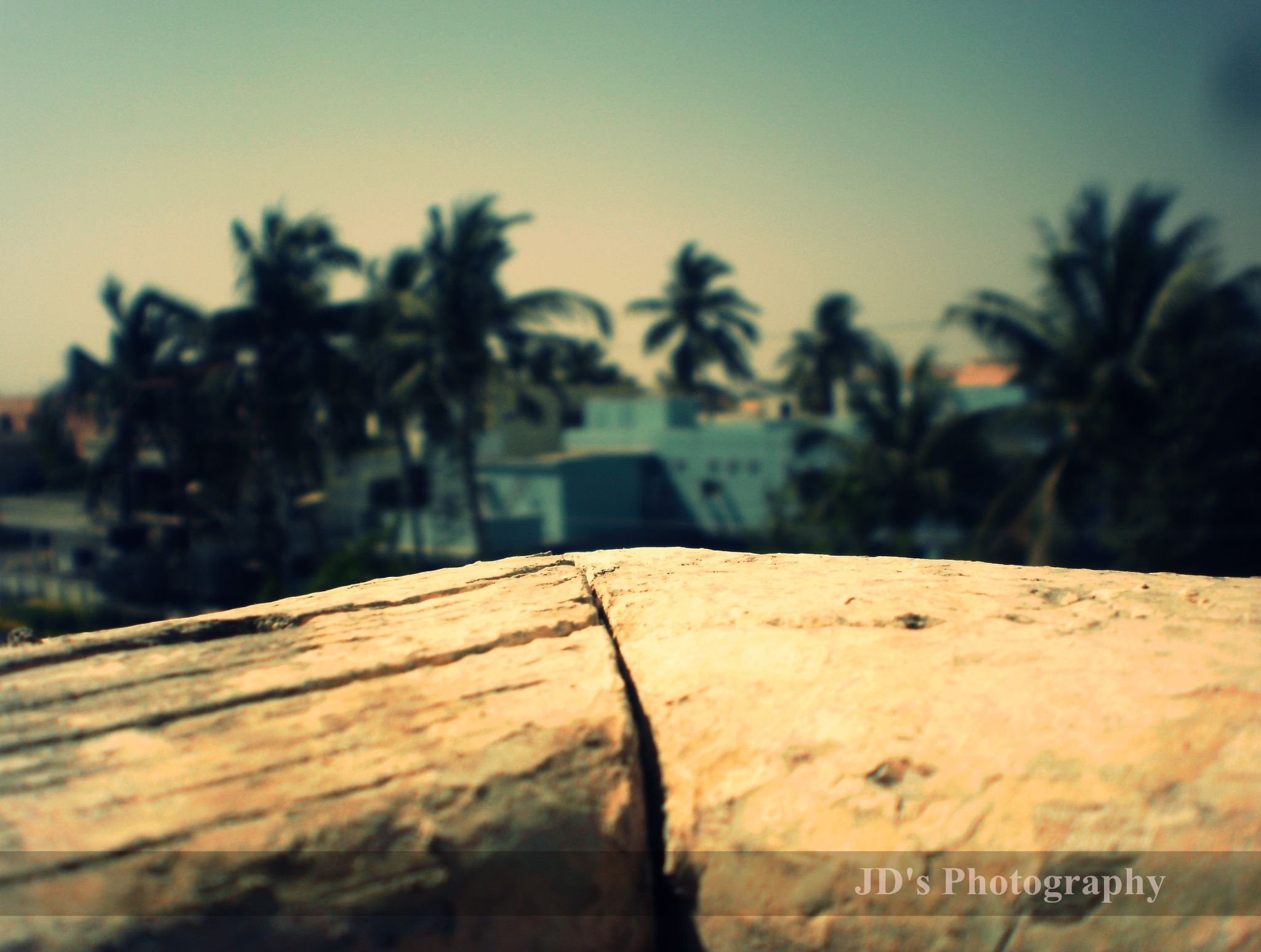 JD's Photography . by jawwad.khalil.16