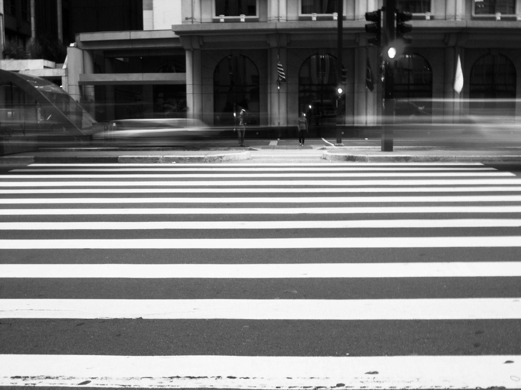 The White Stripes by Danilo Almeida