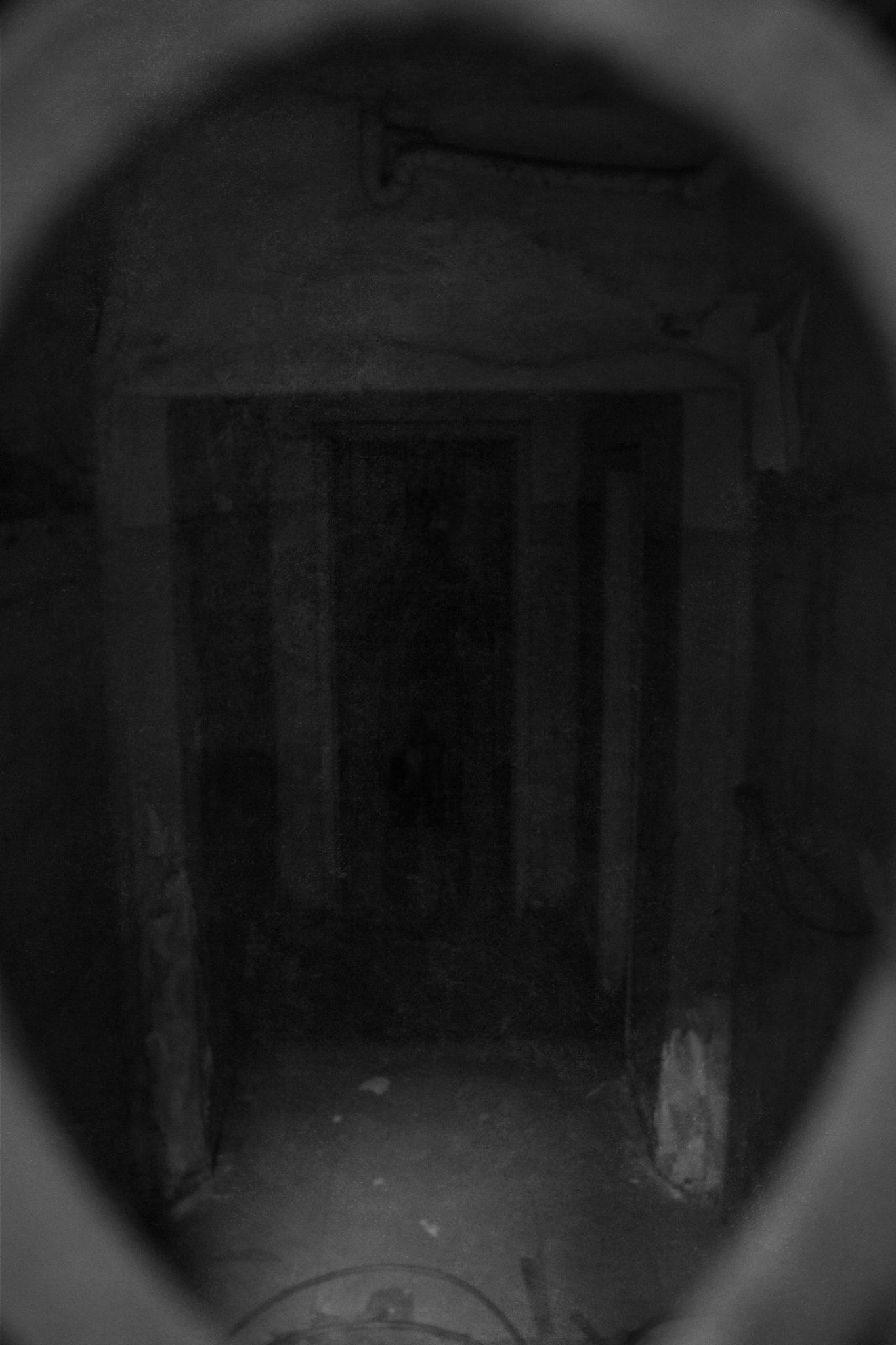 Ghost by Danilo Almeida