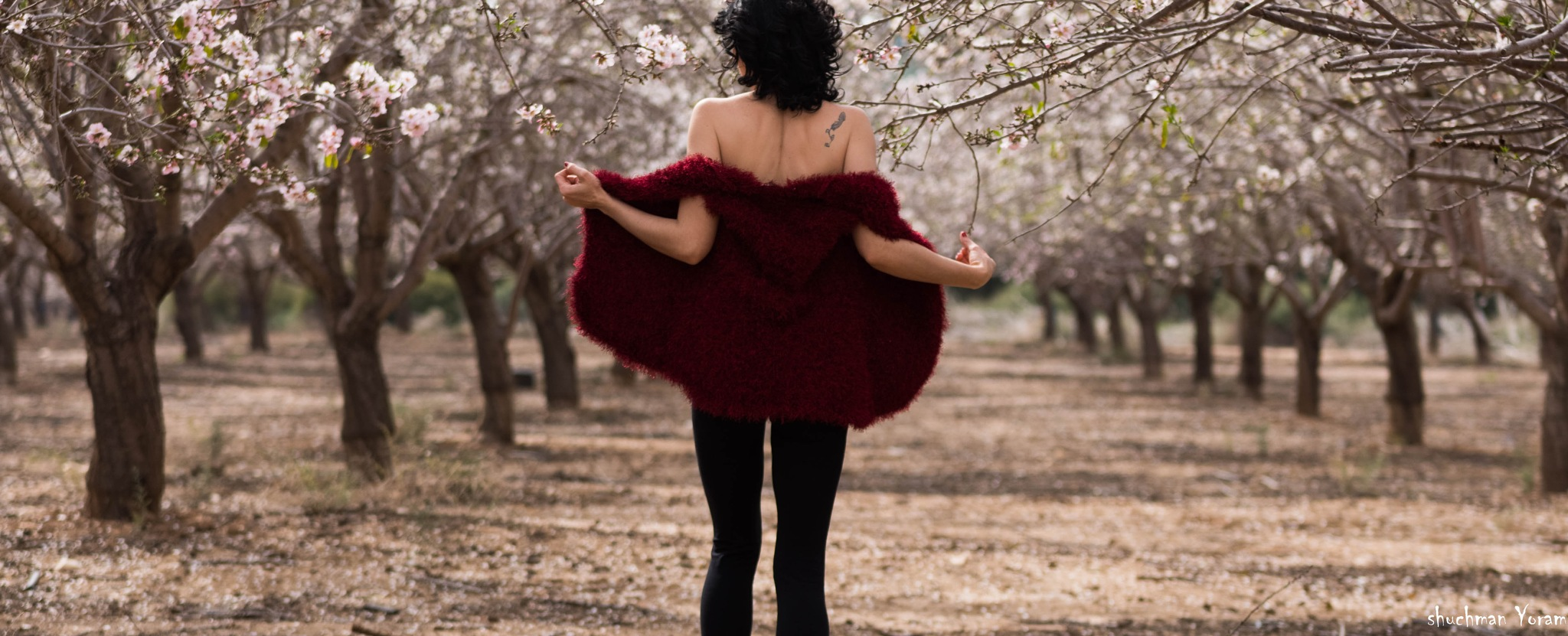 Dancing in the fields by yoram.shuchman