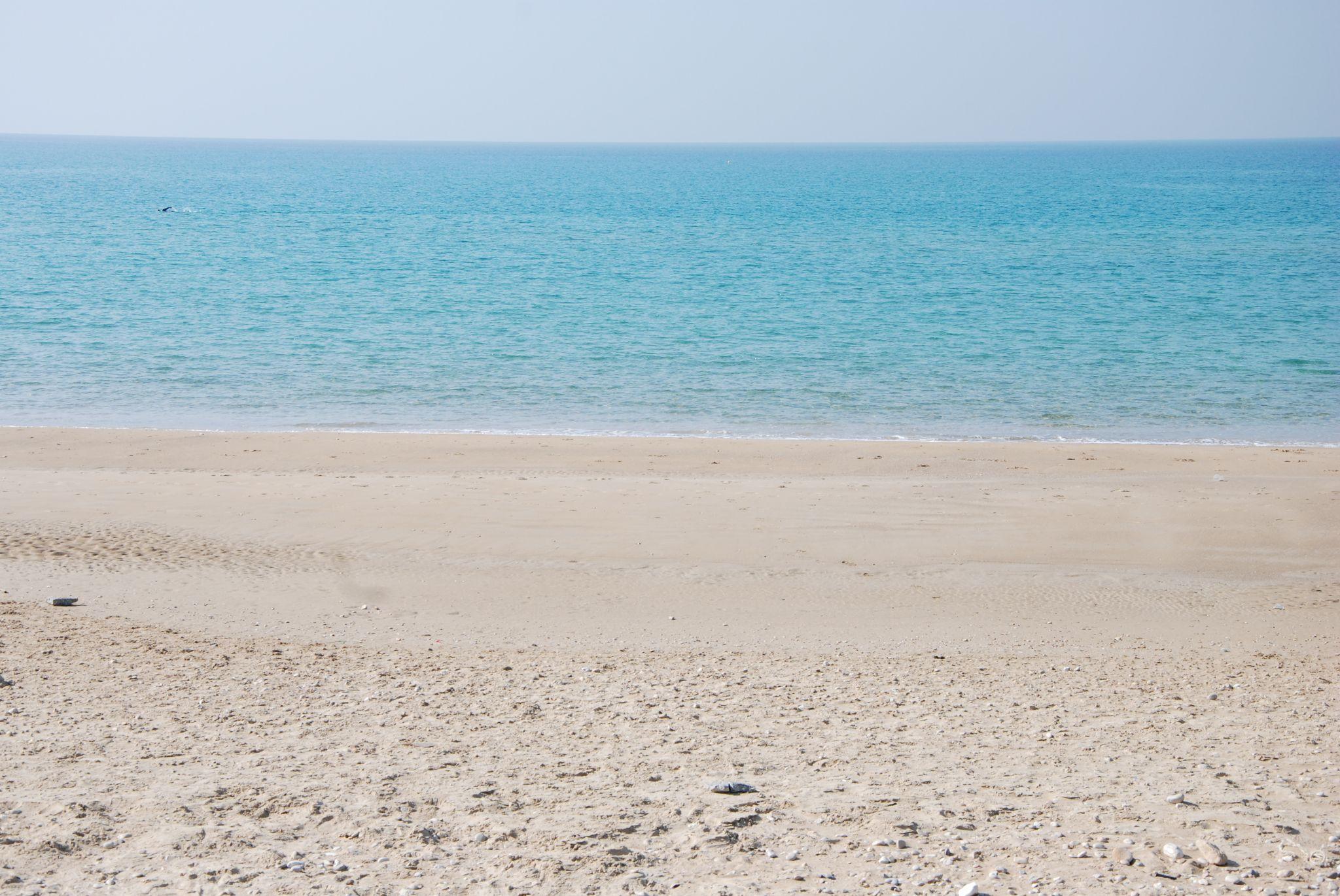 חוף by yossi kramer