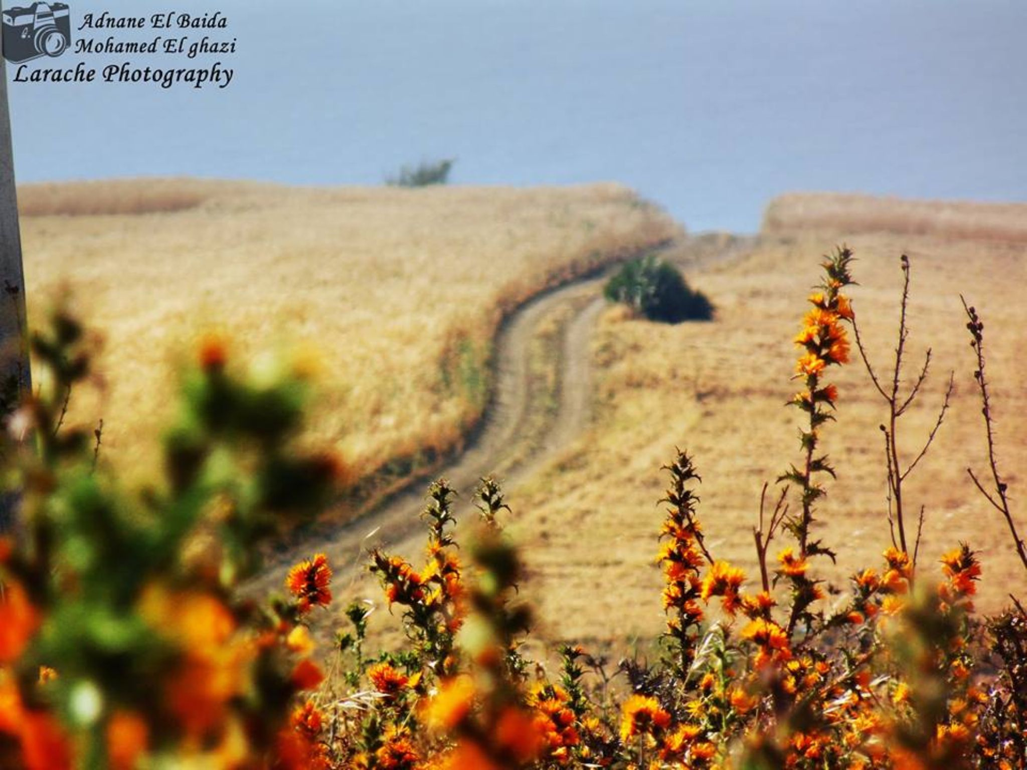 Road To Happiness by Larache Photography & More