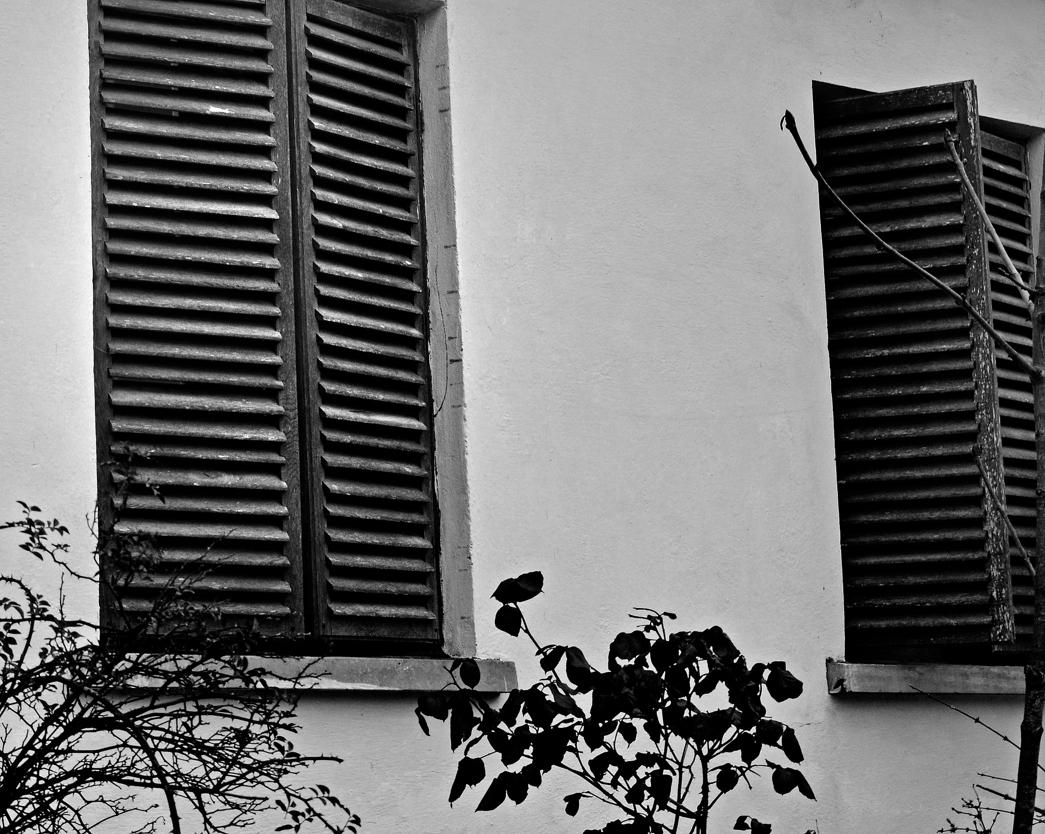 Untitled by guritaalex