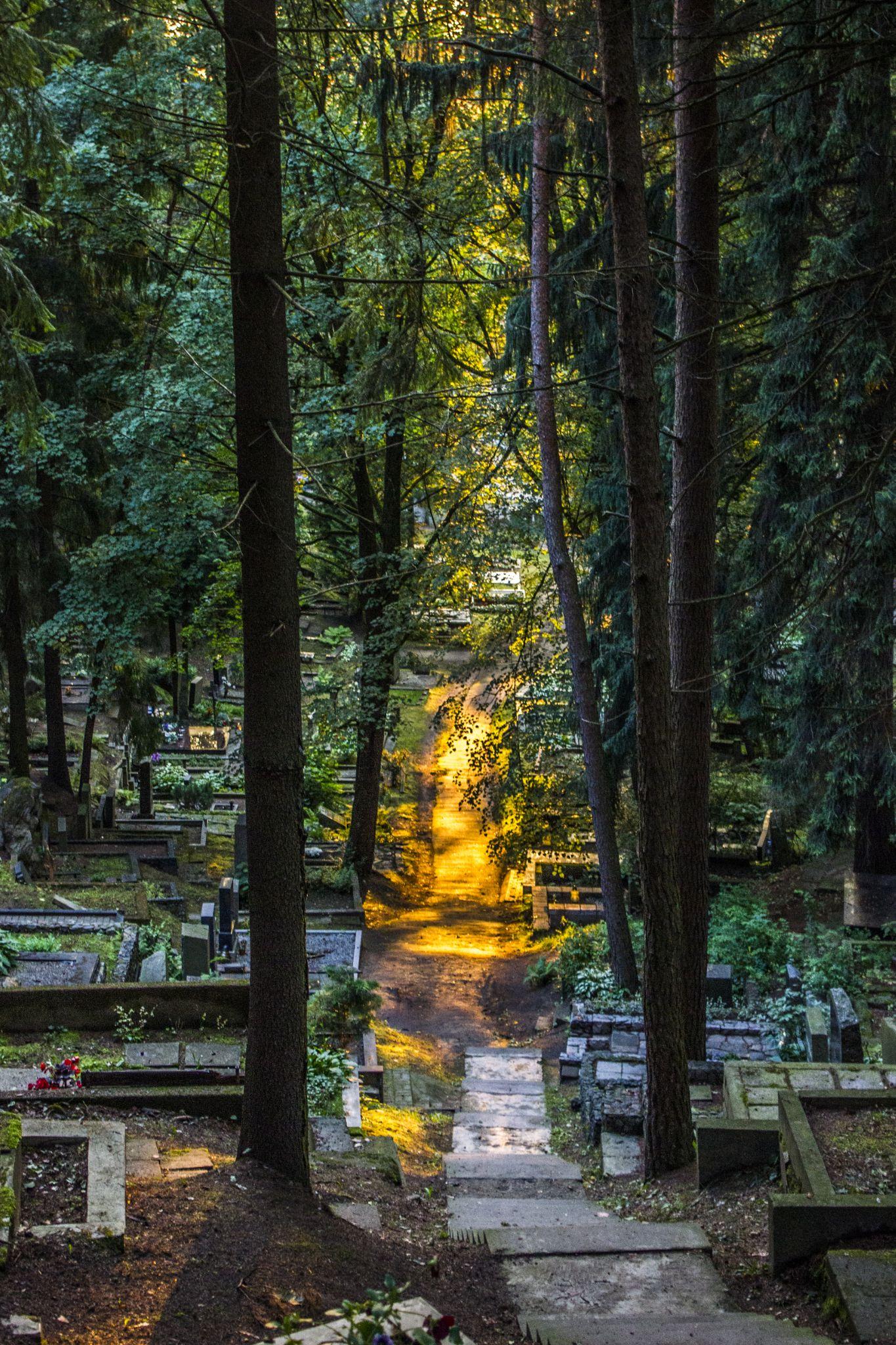 light up the cemetery by Jurij Kolesnikov