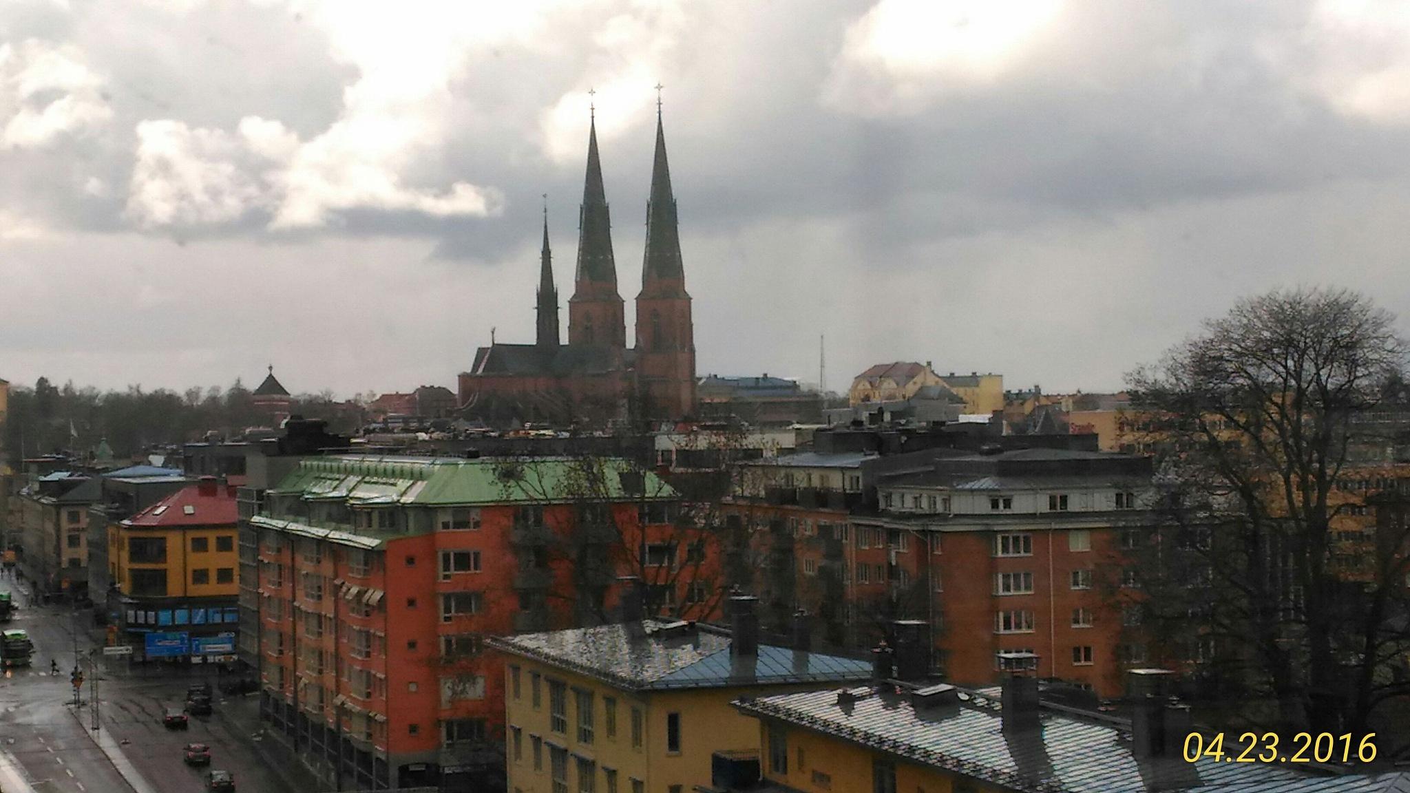 Uppsala by Pedro